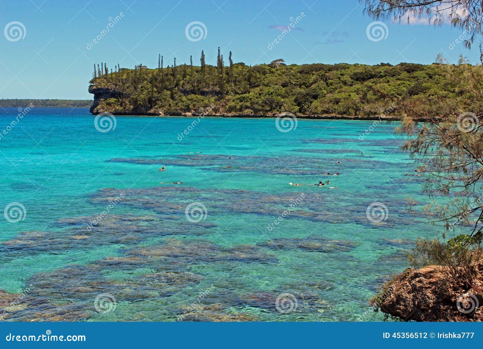 Mergulhando o lagune na ilha de Lifou, Nova Caledônia, South Pacific
