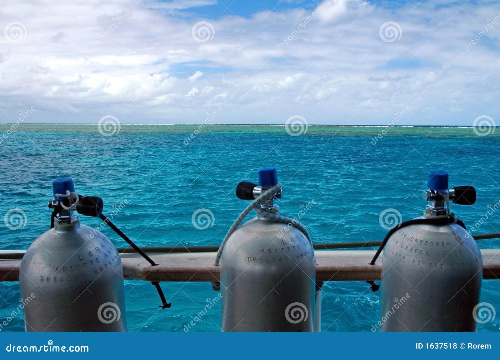 Mergulho do recife