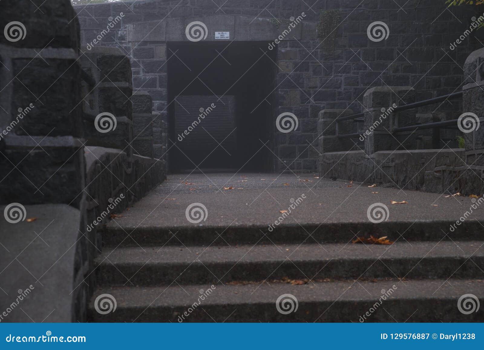 Merkwürdiger Tunnel auf einem nebelhaften Morgen des kalten Nebels