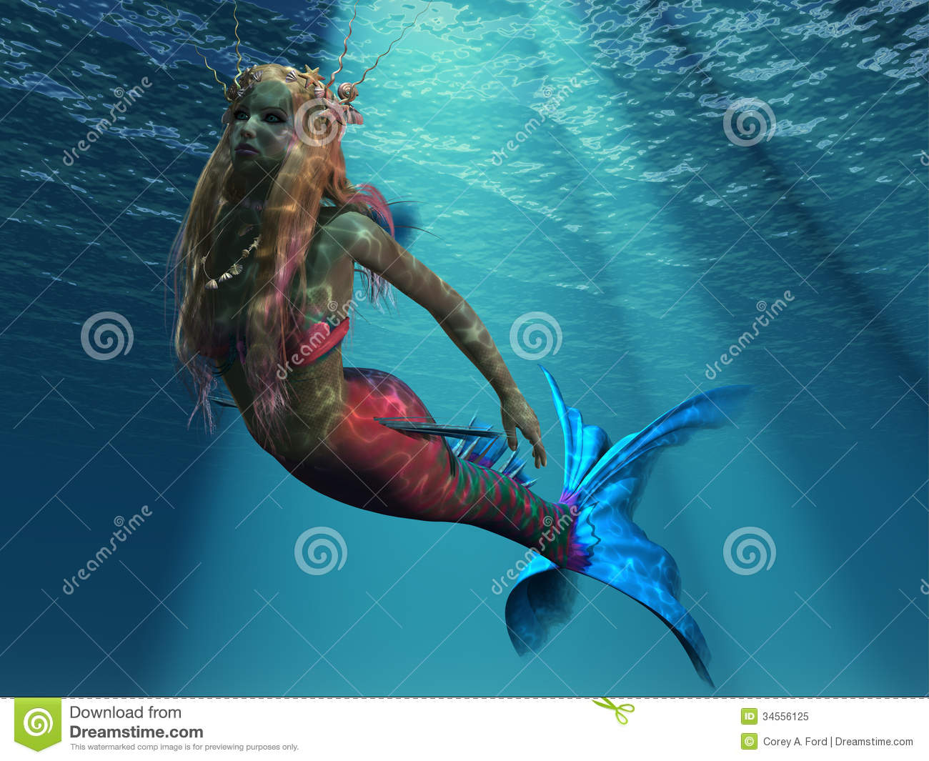 mermaid of the ocean royalty free stock photo image 34556125
