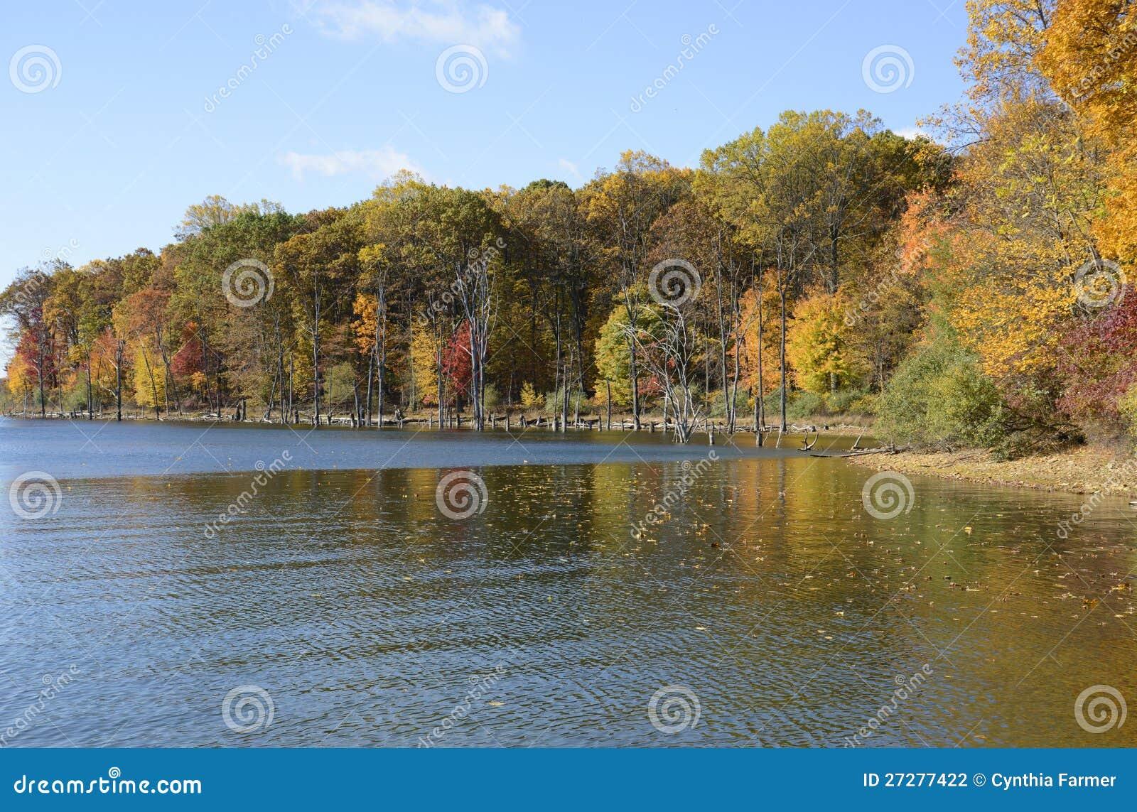 Merrill liten vikbehållare i hösten