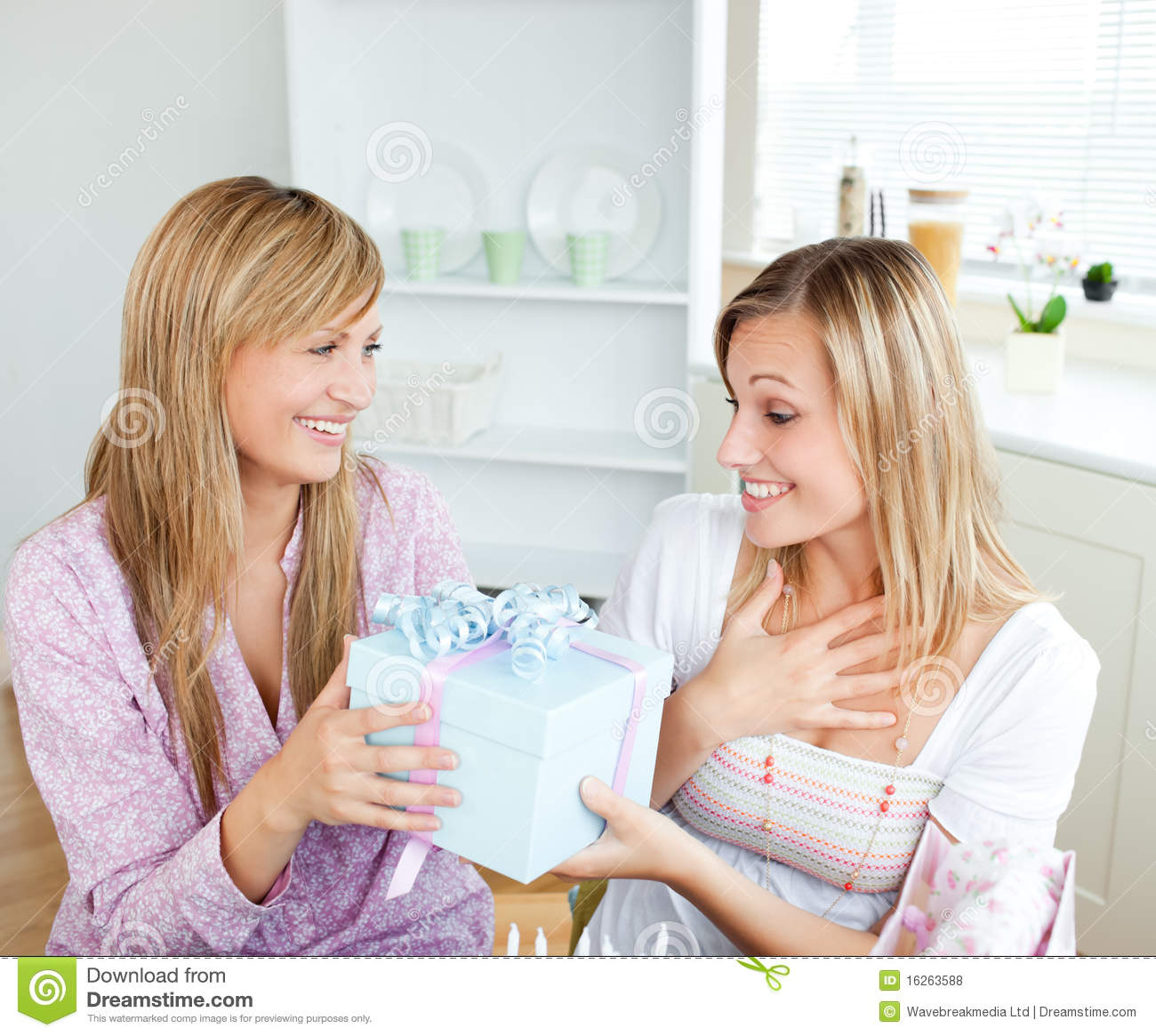 Merry Caucasian Woman Giving Her Friend A Present Stock