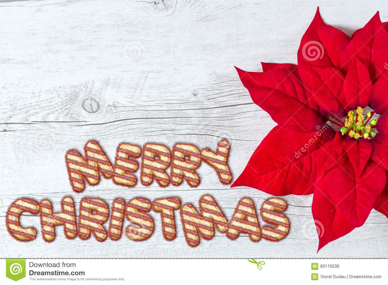 Merry christmas background stock photo image of winter 60110538 merry christmas greetings written with shiny letters on traditional white wood background and red poinsettia flower m4hsunfo