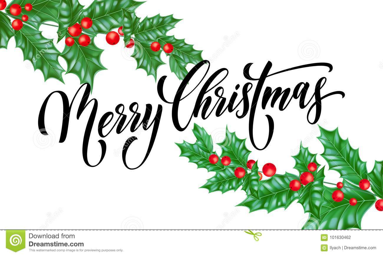 Merry Christmas Greeting Card Vector Holly Leaf Berry New Year