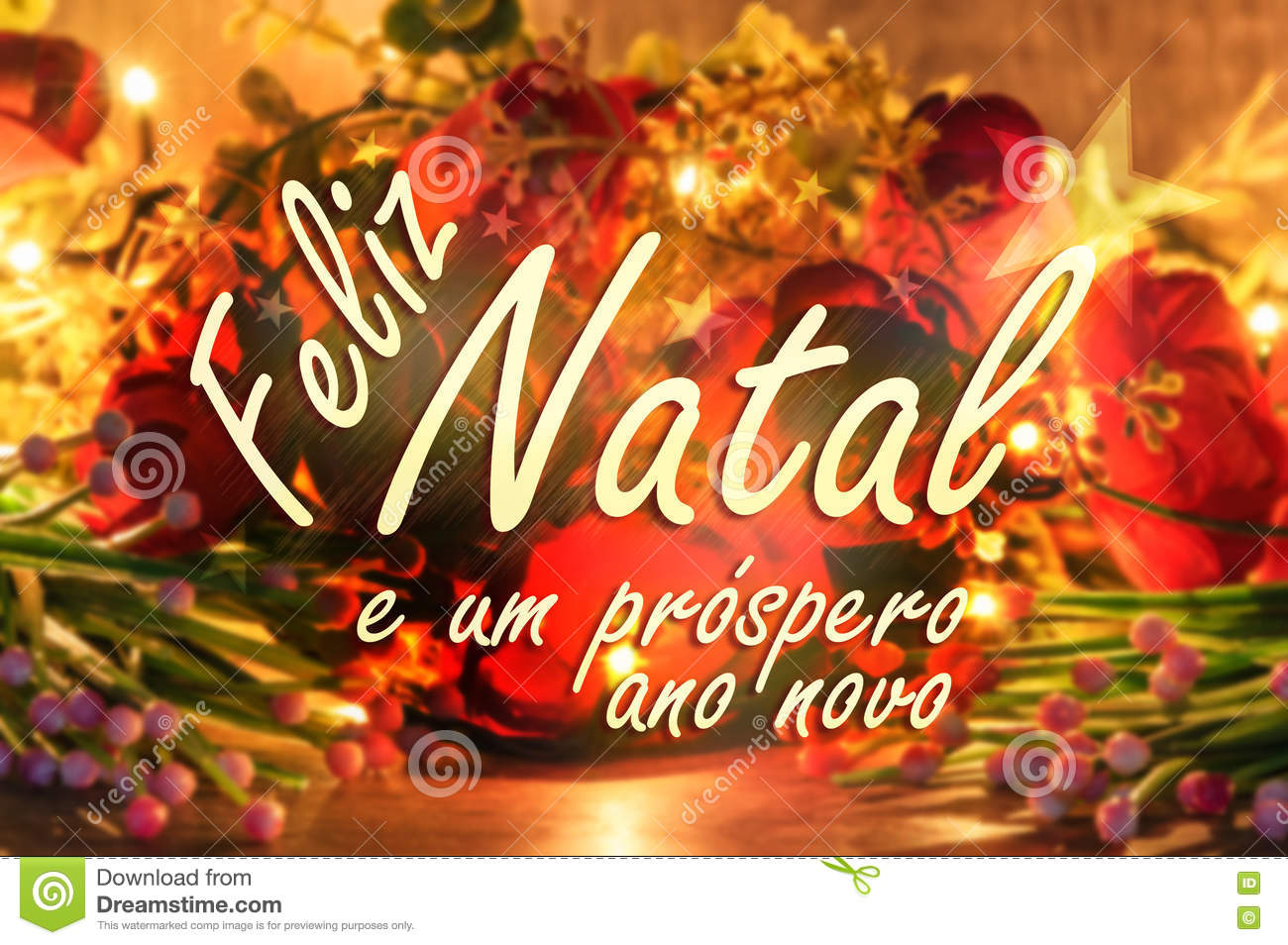 Merry Christmas Message In Portuguese. Flowers And Lights Background ...