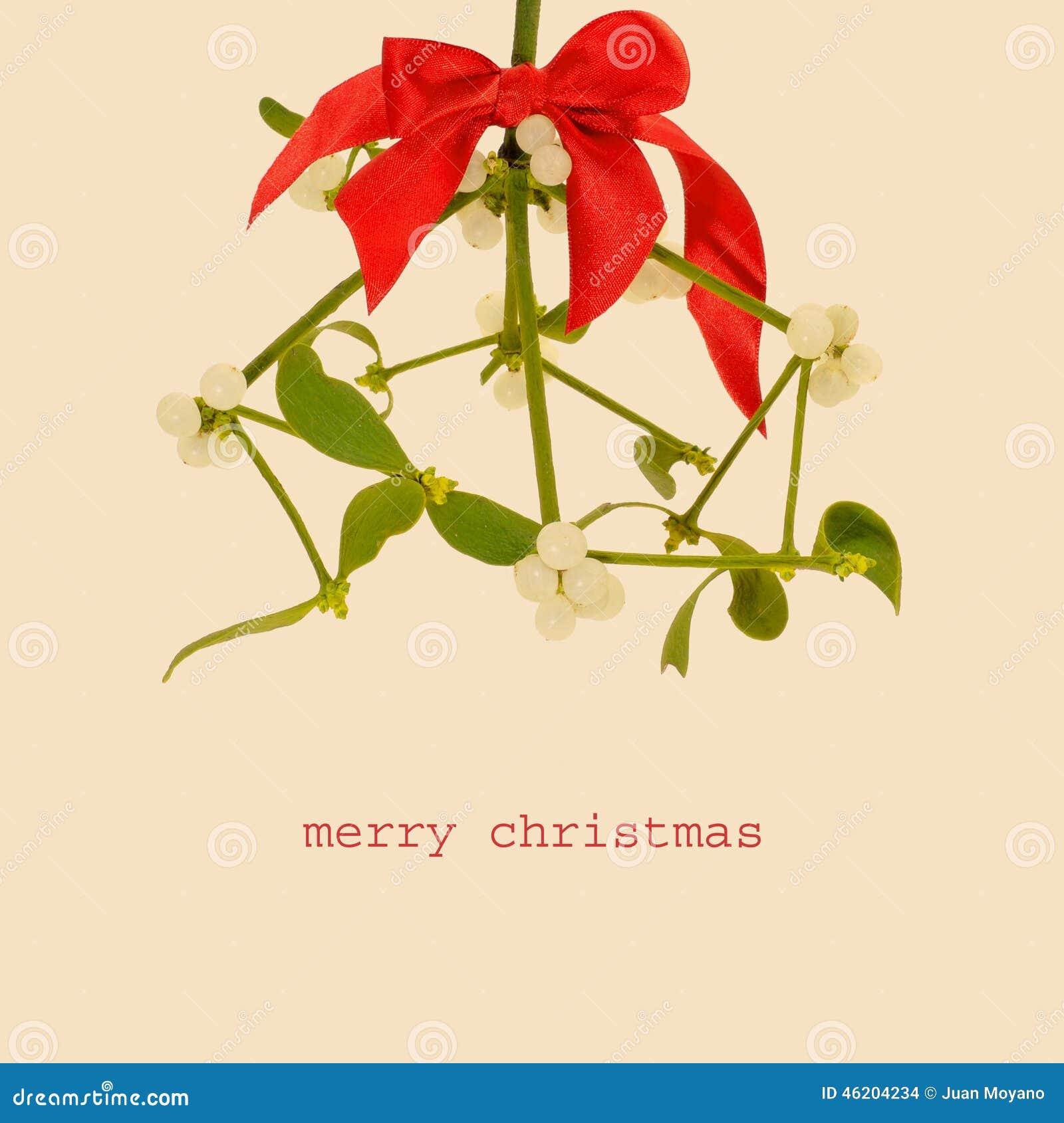 christmas common red kites
