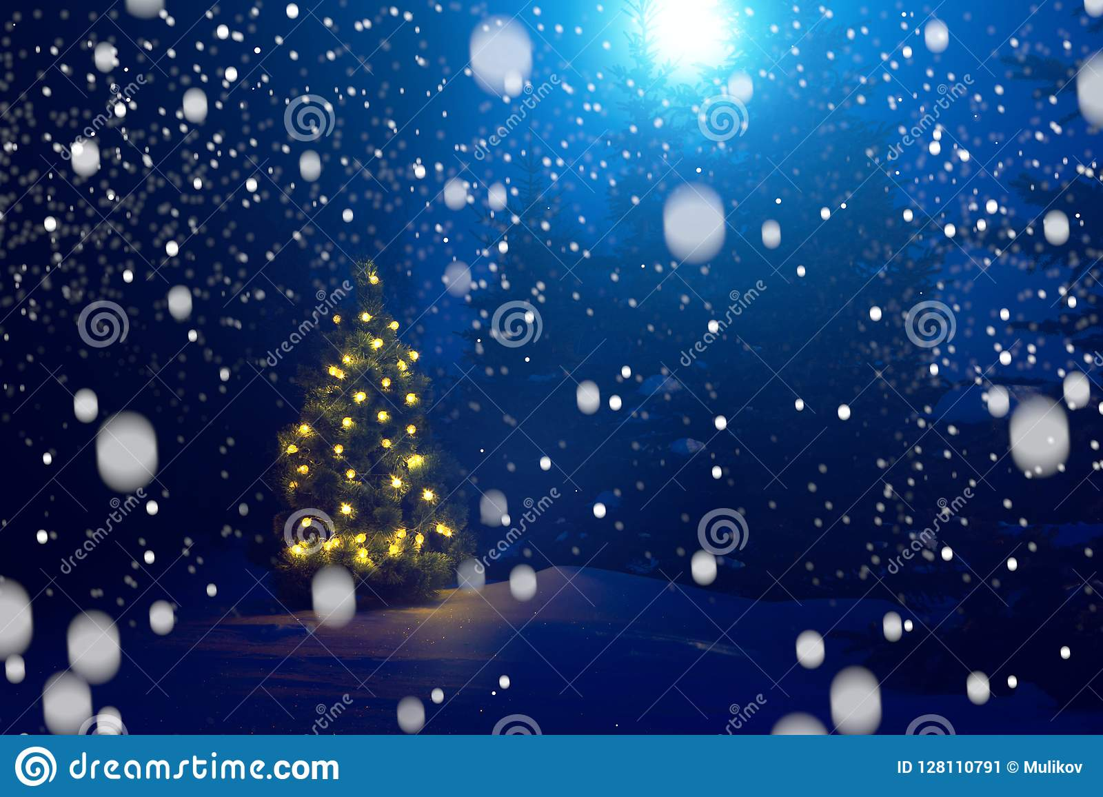 Merry Christmas! Christmas Tree Outside Snowfall In The Moonlight ...