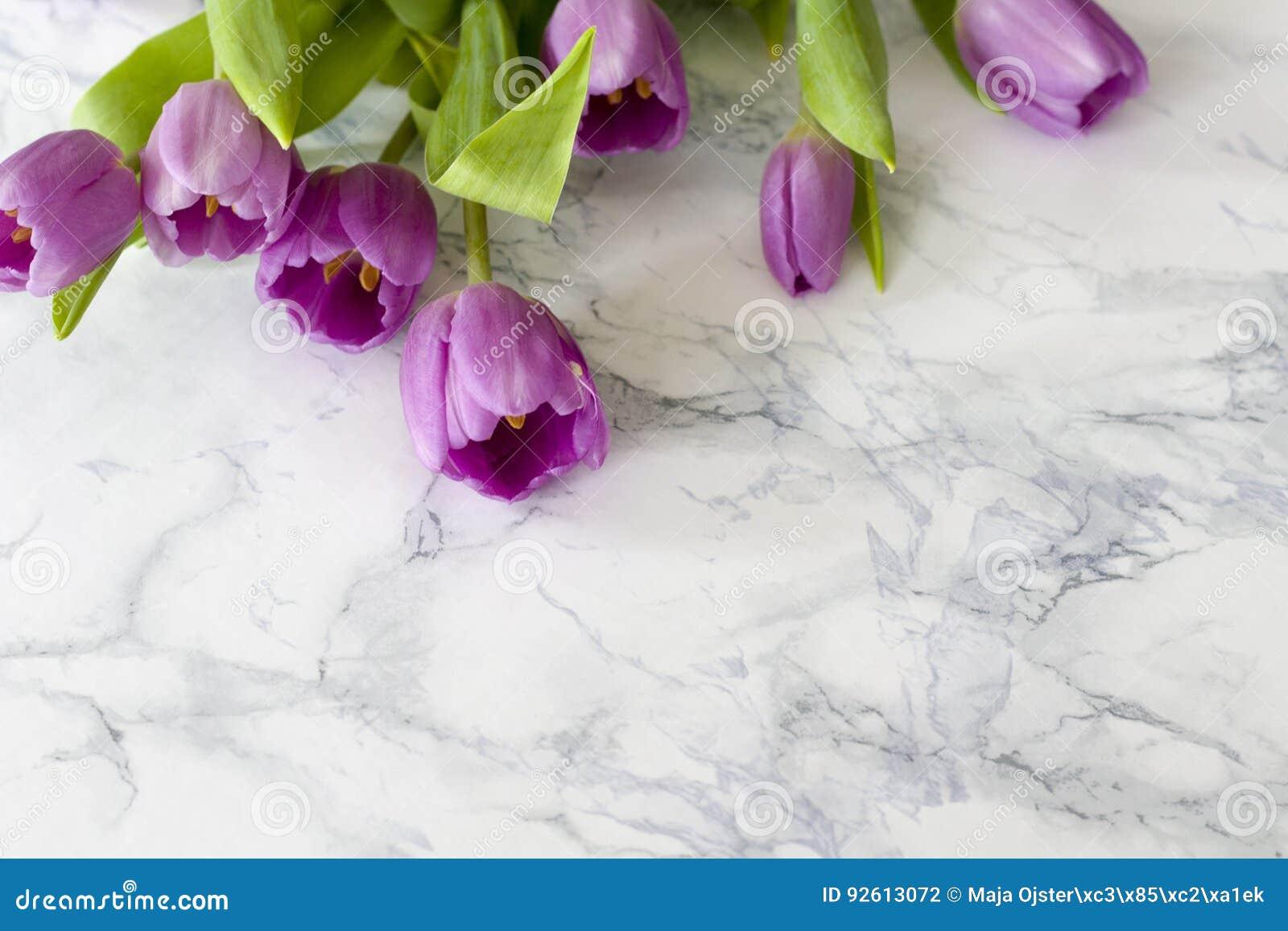 A mesa de escritório da mulher com flor da mola floresce, tulipas no fundo branco