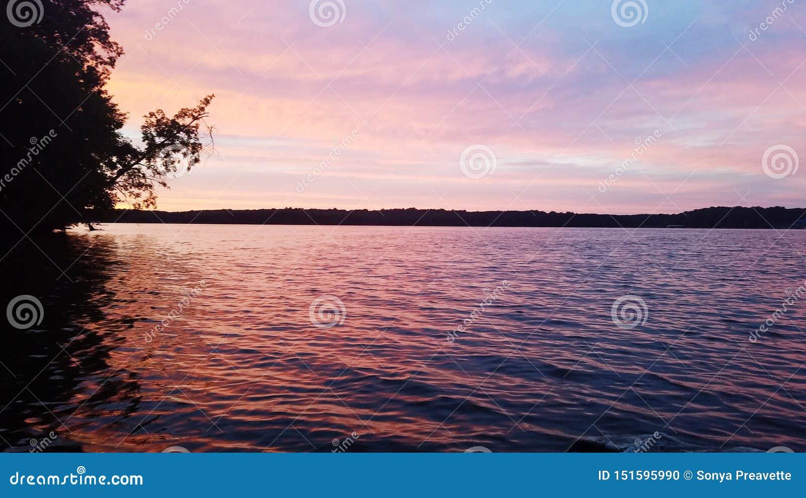 Mesmerizing water pink summertime relaxing