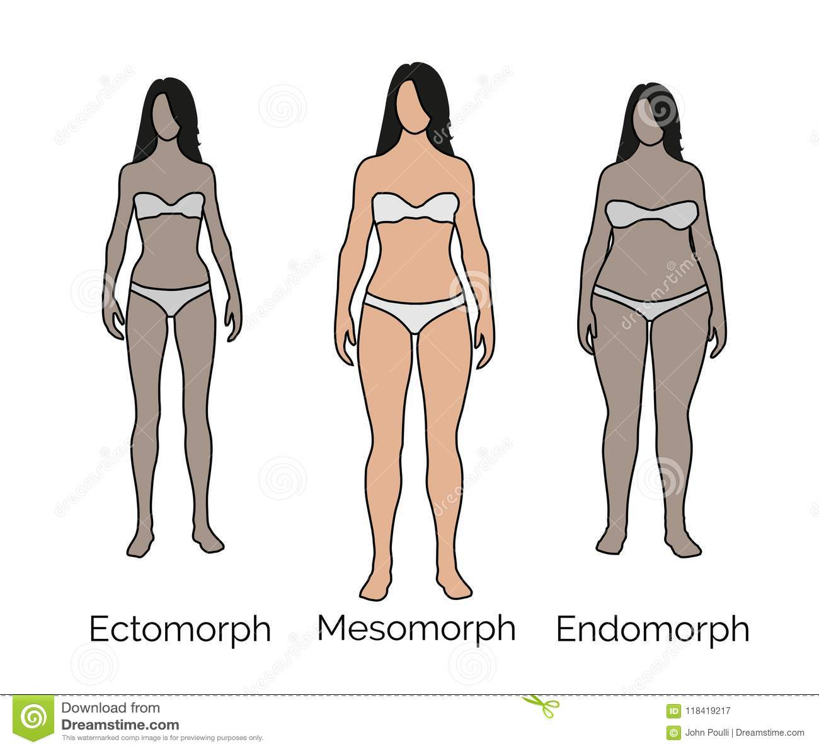 Mesomorph Female - Medium Body Frame Stock Illustration ...