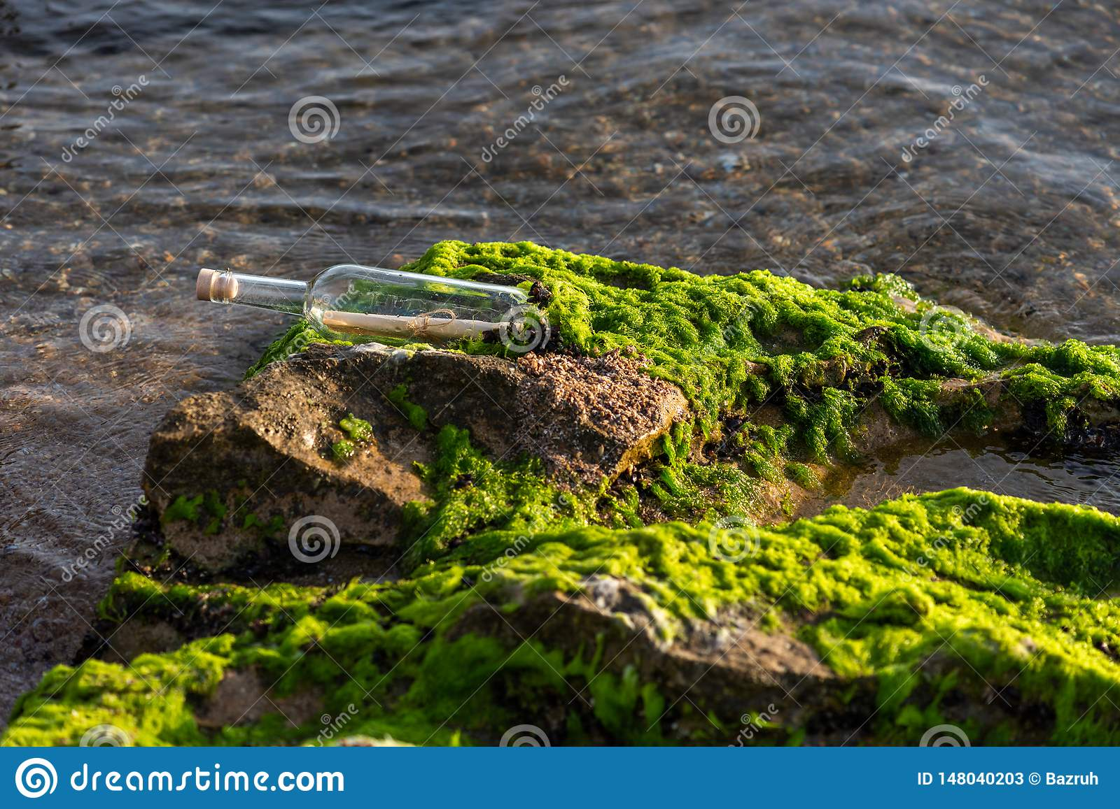 Message in a bottle on a stone covered with seaweed