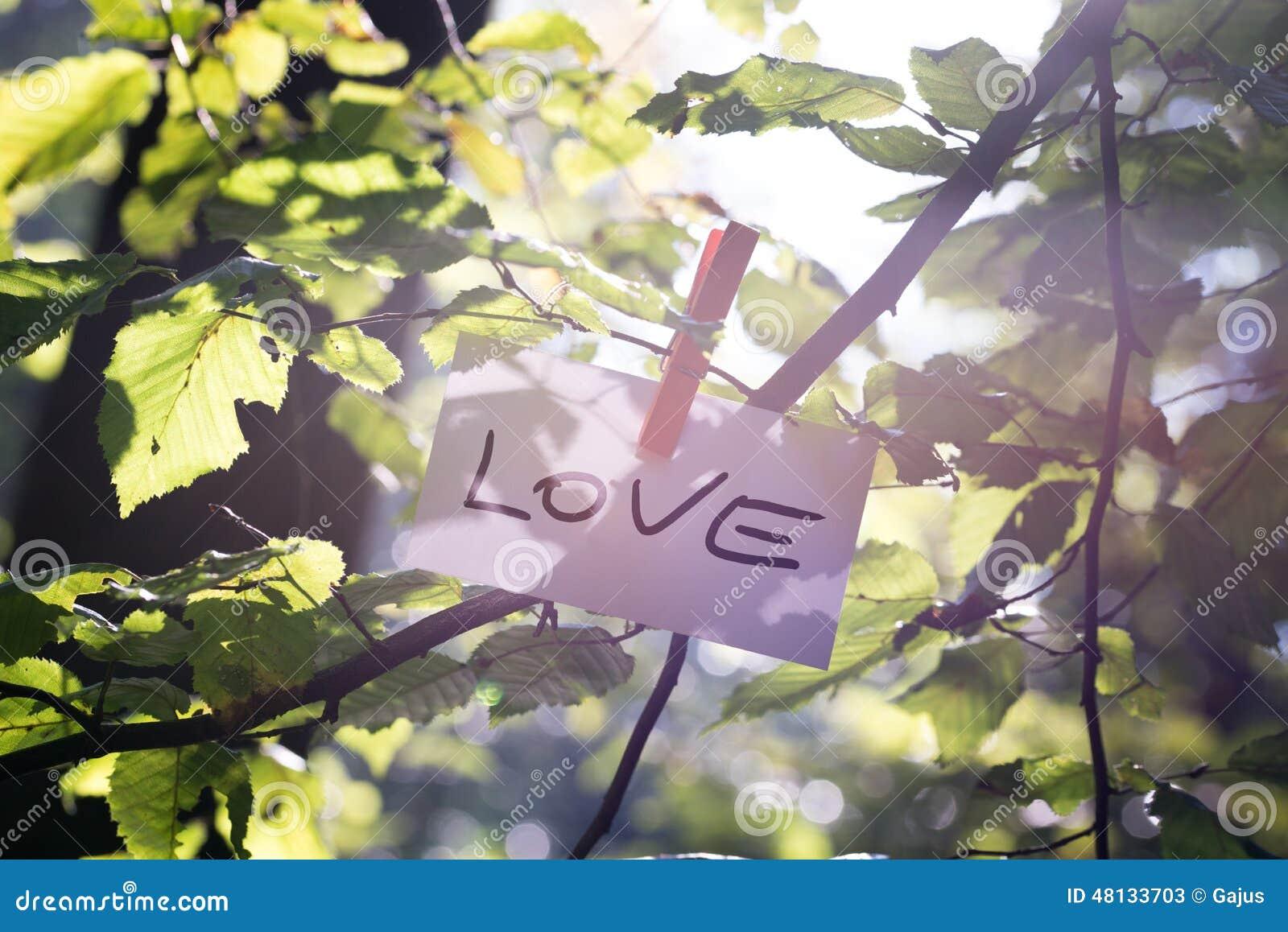 Messaggio di amore in natura