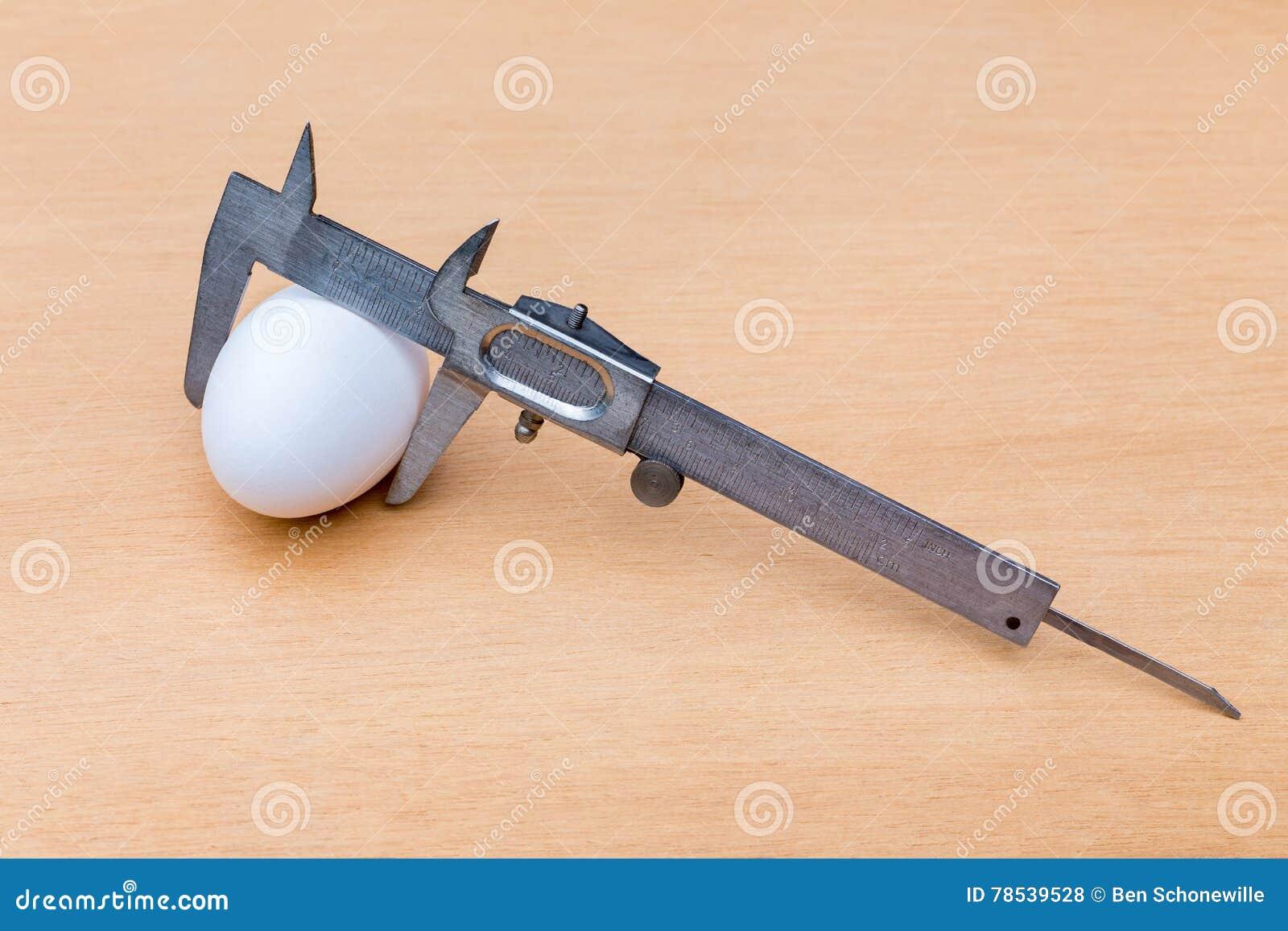 Messende weiße Hühnerei des Noniustasterzirkels