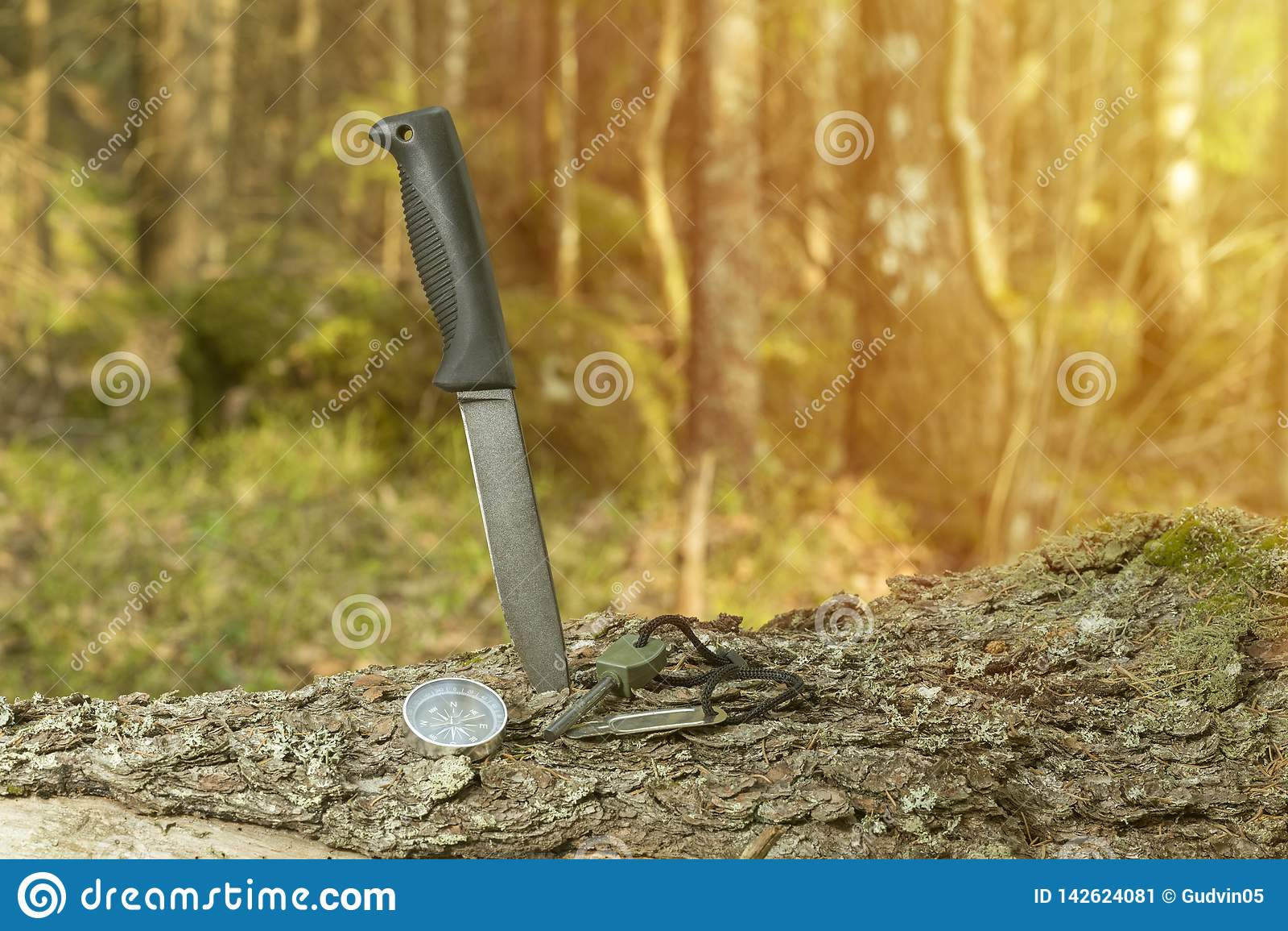 Messer, Kompass und Feuerstein auf dem Stumpf im Wald