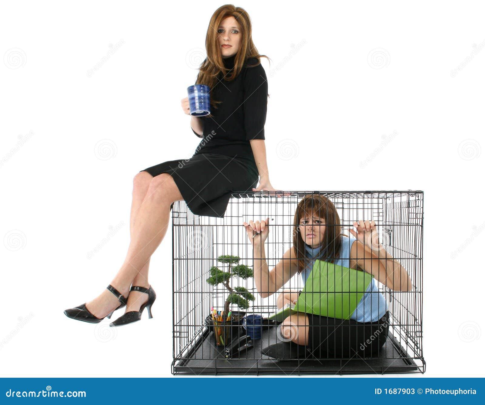 Messo in gabbia