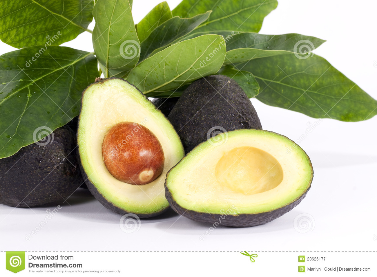 Metà dell avocado