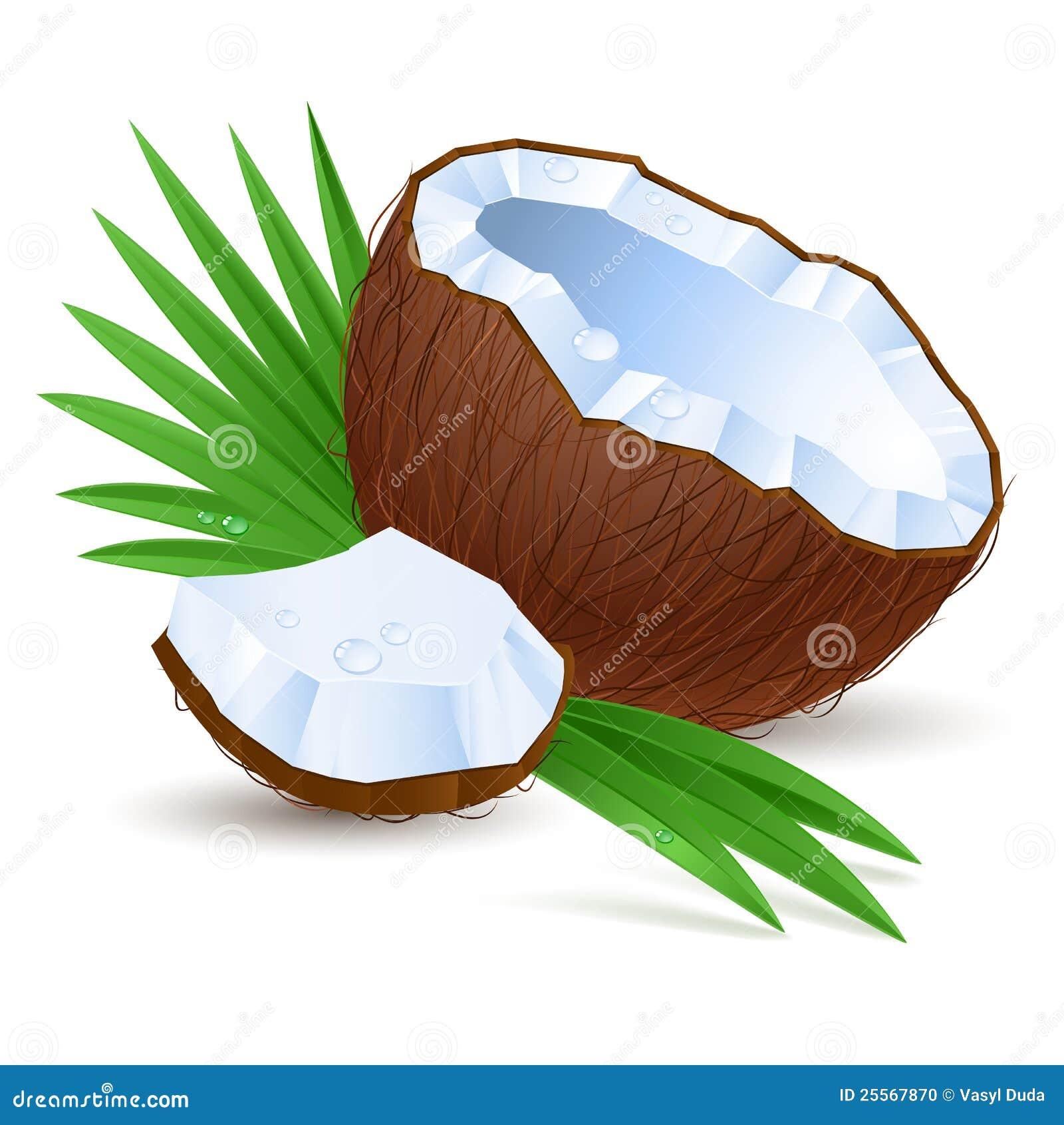 Metà della noce di cocco