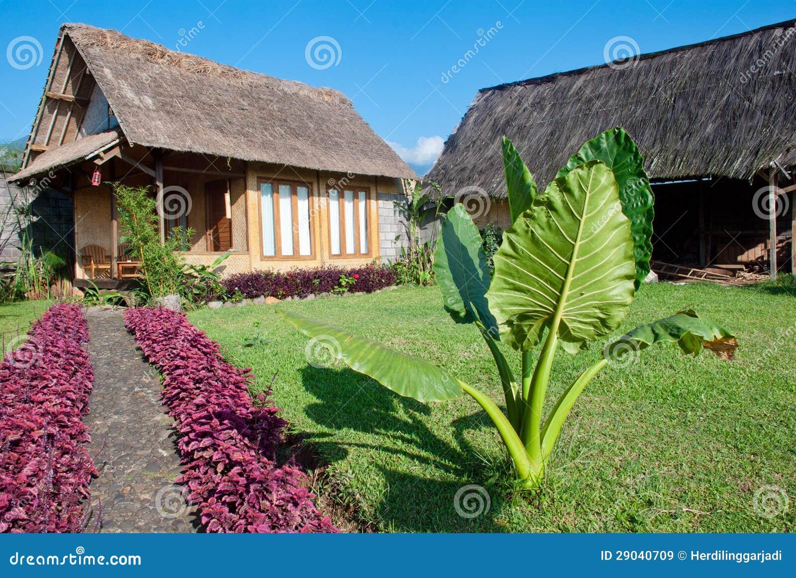 Met stro bedek huis in groene tuin stock afbeelding afbeelding