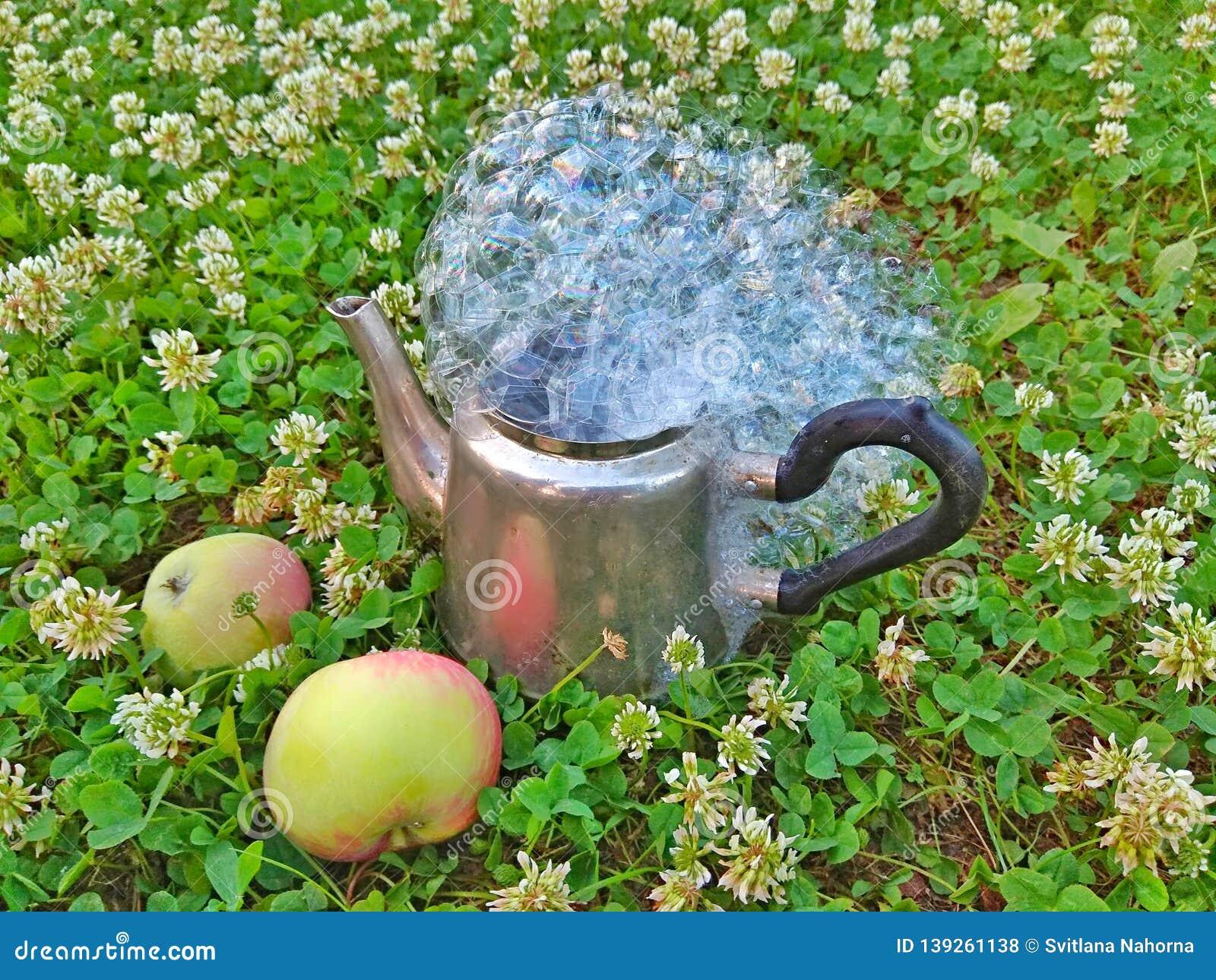 Metal coffee pot on grass