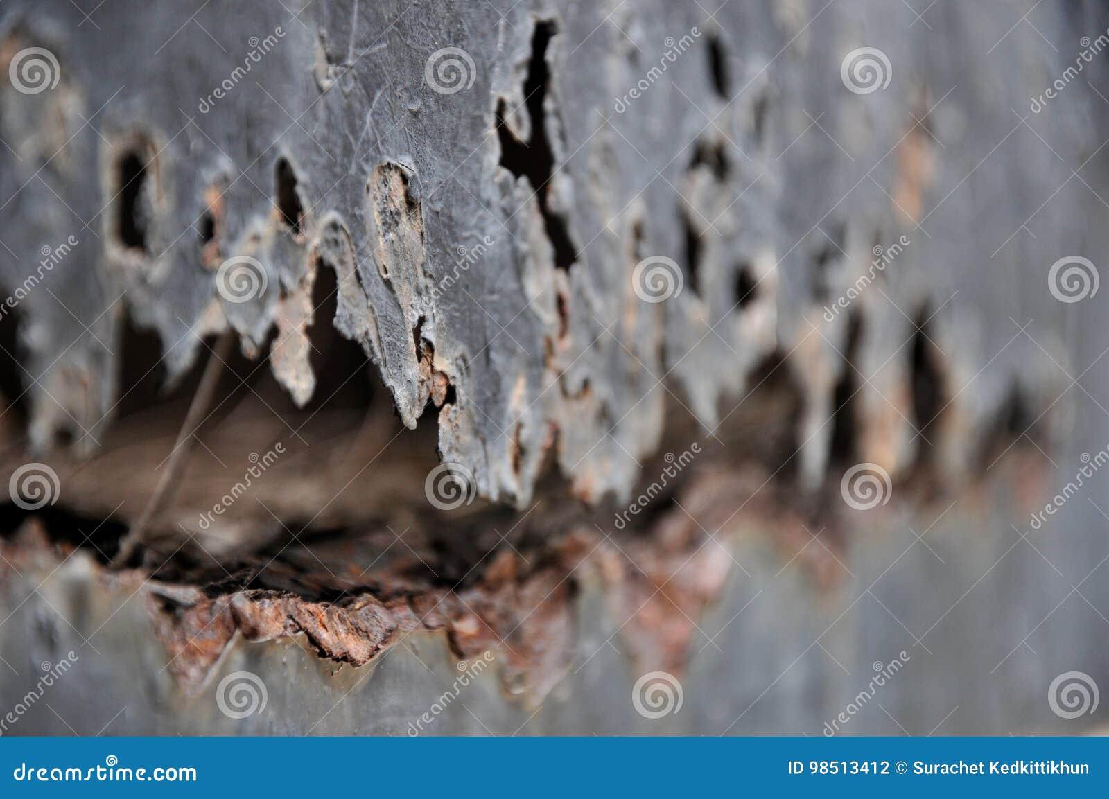 Metal da oxidação, dano do fundo da oxidação e da corrosão