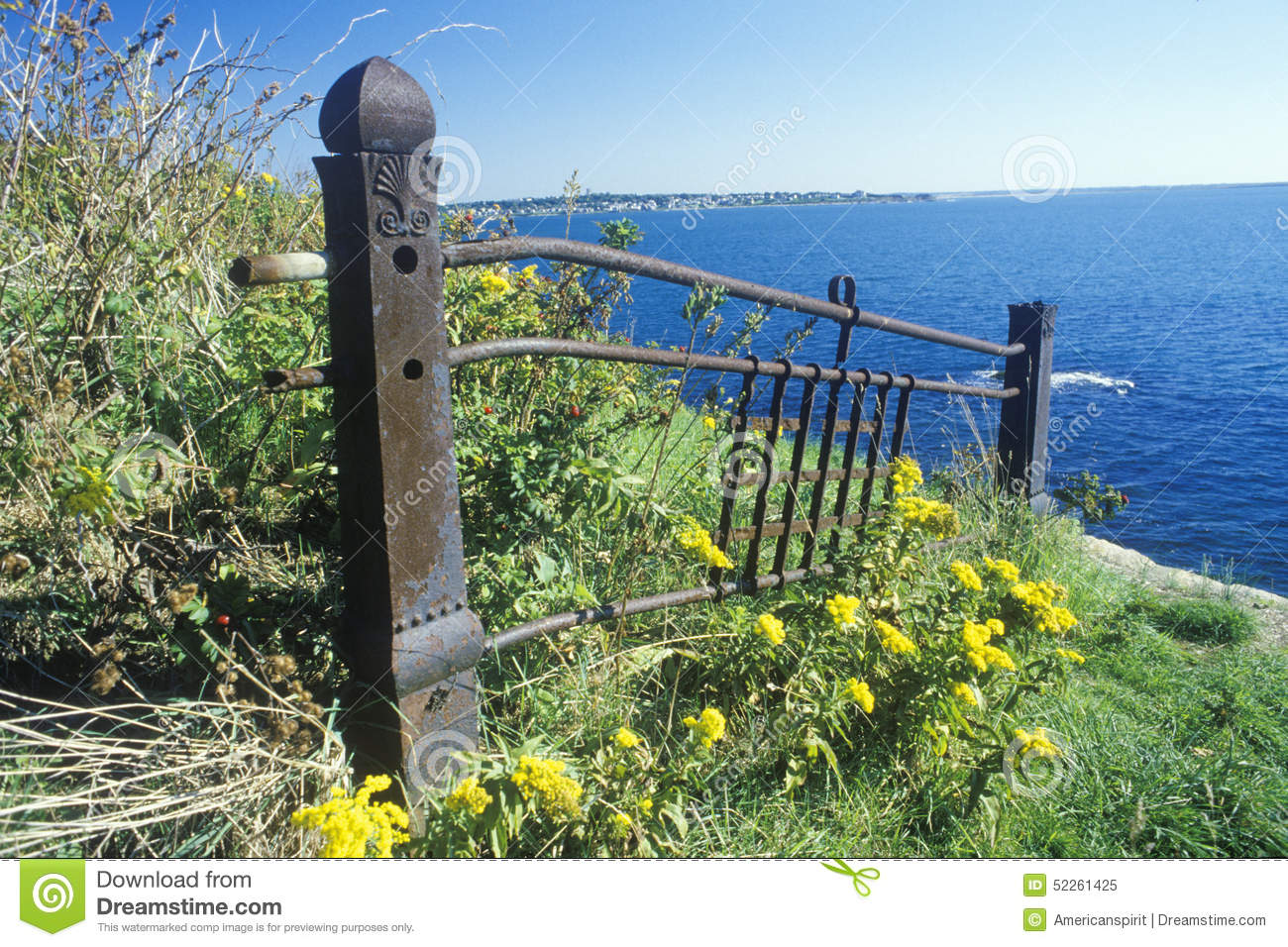 Metal fence with wildflowers, Newport, RI