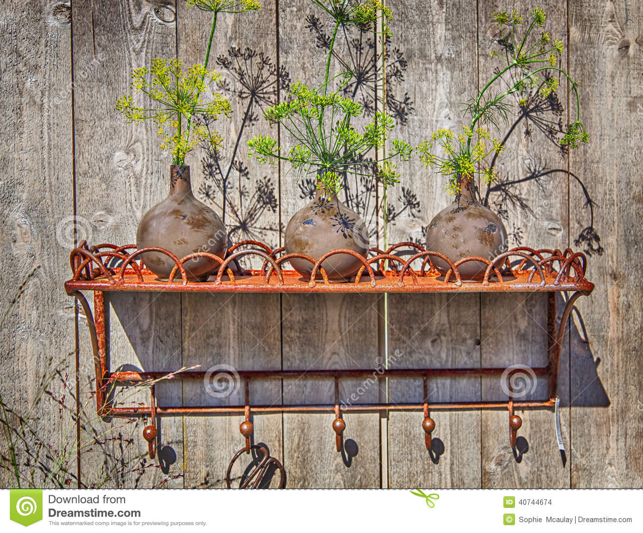 Plant Pot On Garden Shelf Stock Photo Image 57820127