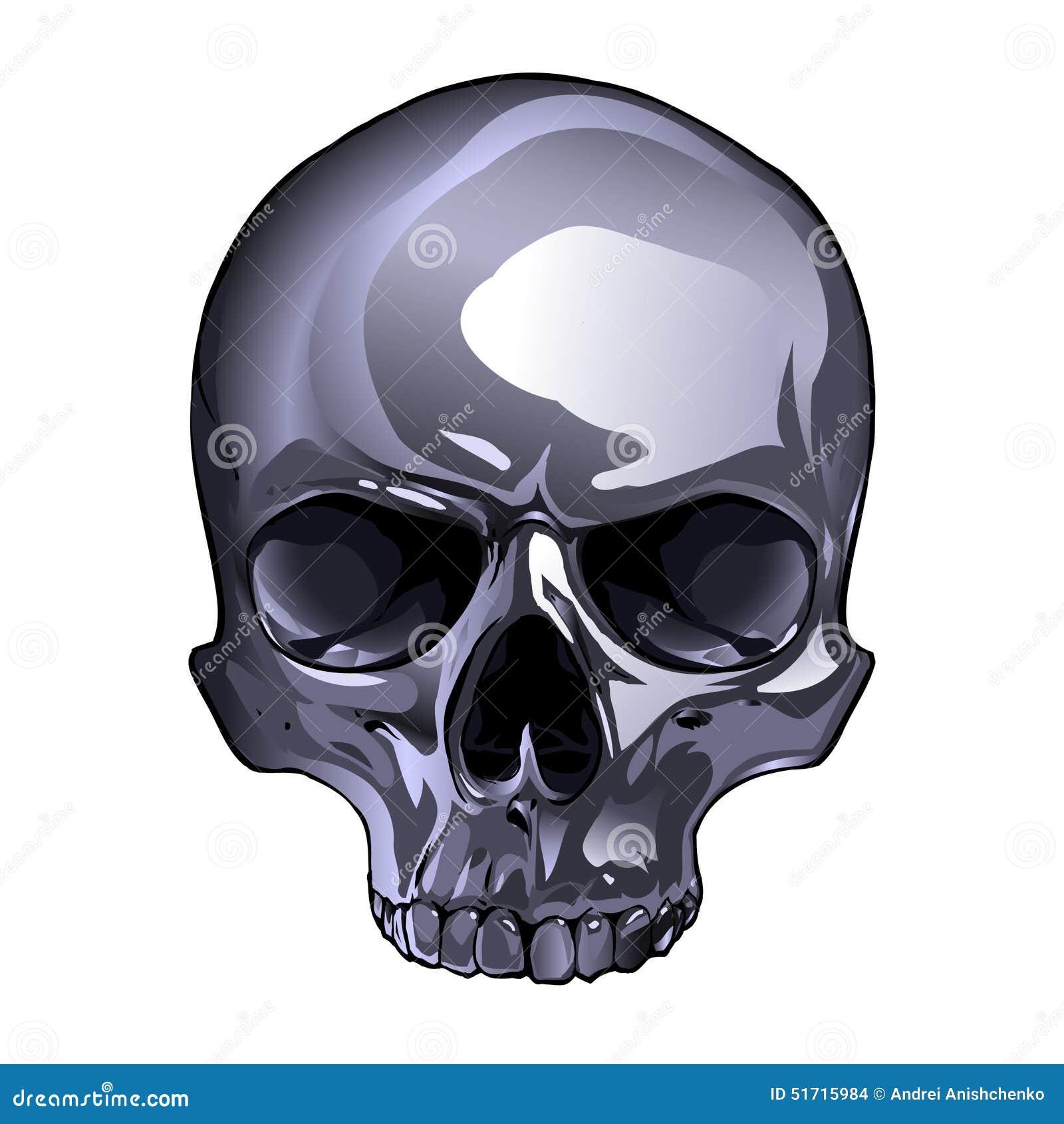 Skulls, Skull Mirror, Crystal Skulls, and Skull Toilet Brush from ...