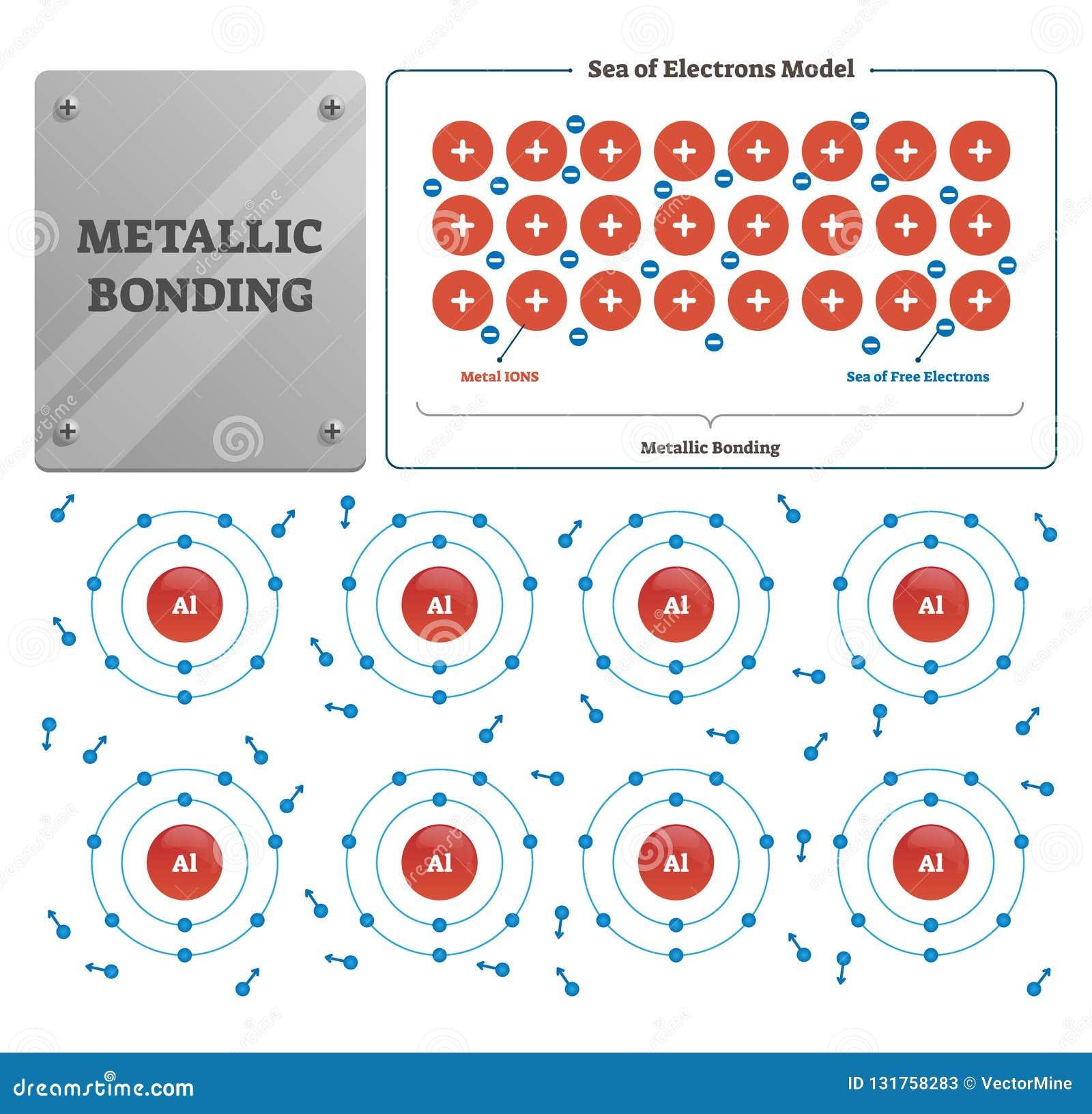 Metallic Bonding Vector Illustration  Labeled Metal Ions