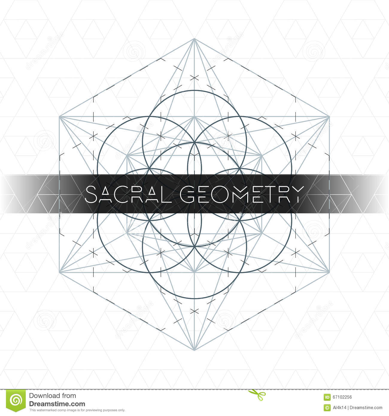 The Real Seed Of Life Diagram Wiring For Professional Embryo Germination In Metatron Outline Sacred Geometry Stock Vector Rh Dreamstime Com Corn