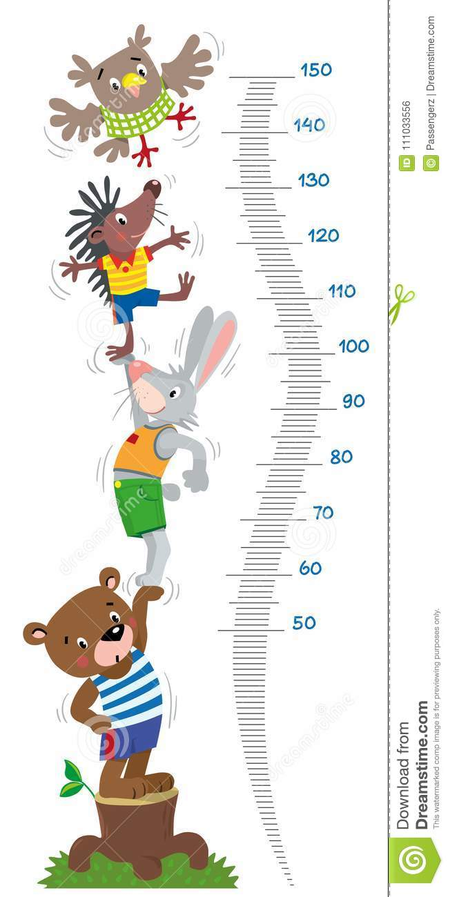 Height Cartoons Illustrations Amp Vector Stock Images
