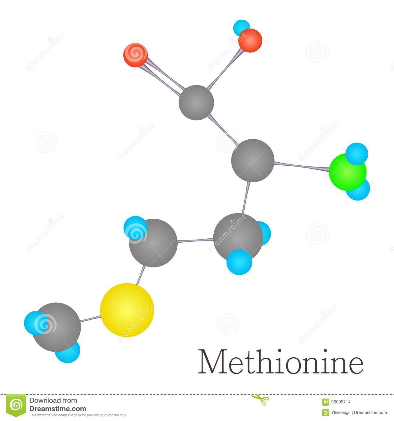 methionine 3d molecule chemical science stock vector illustration
