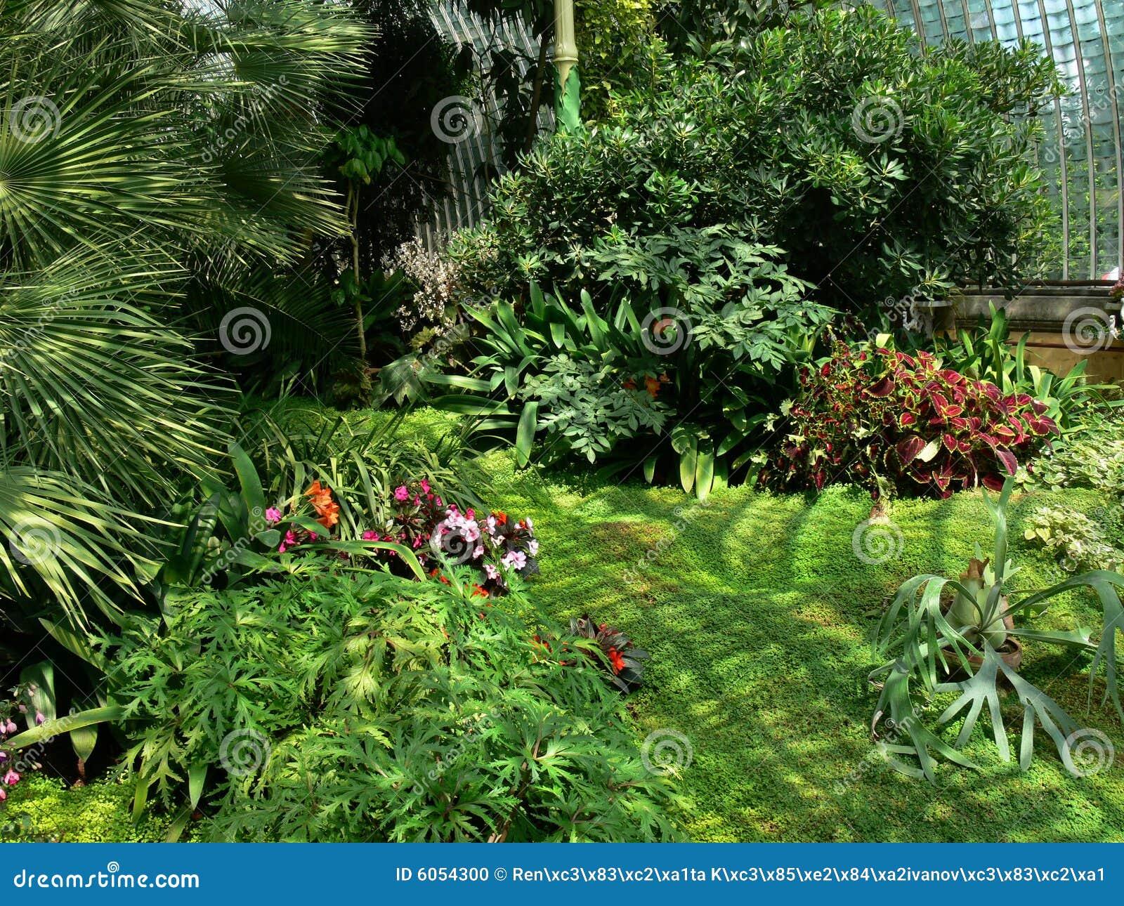 Methode durch das tropische Gewächshaus