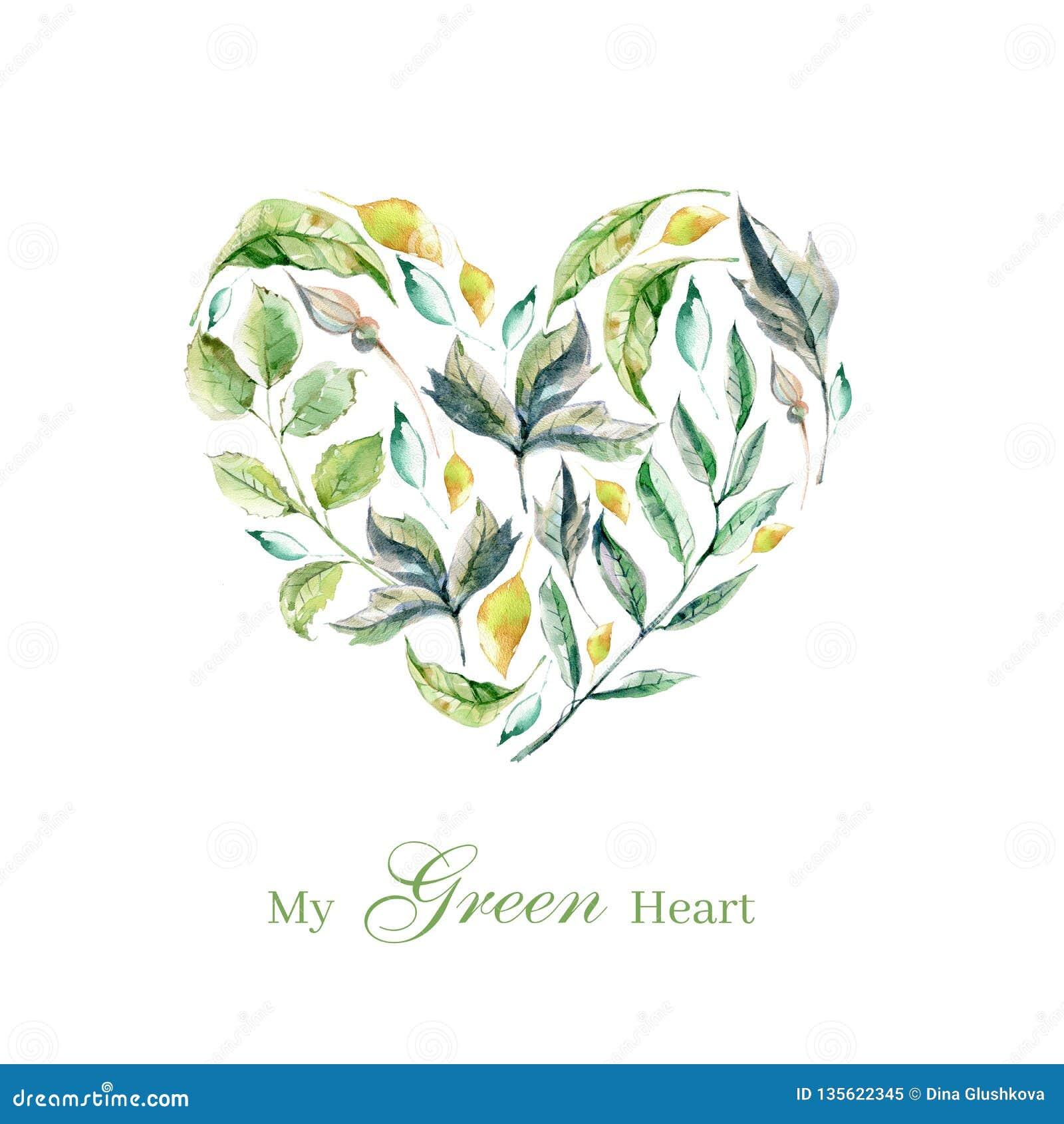 Metta delle piante dell acquerello, delle foglie verdi e delle erbe dipinte a mano, p