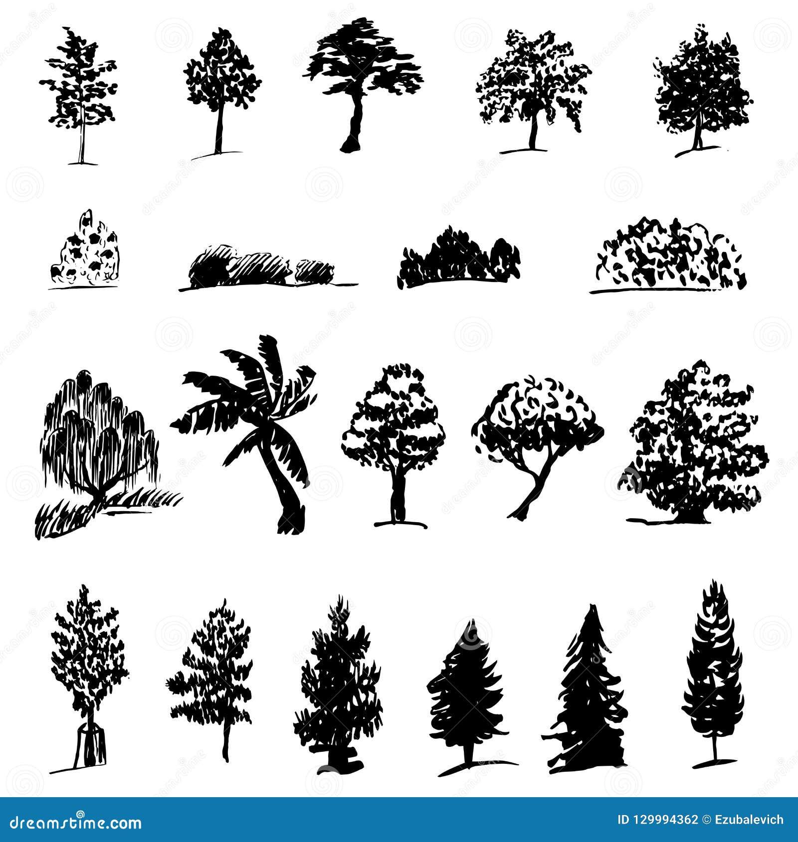 Metta delle siluette di vari alberi