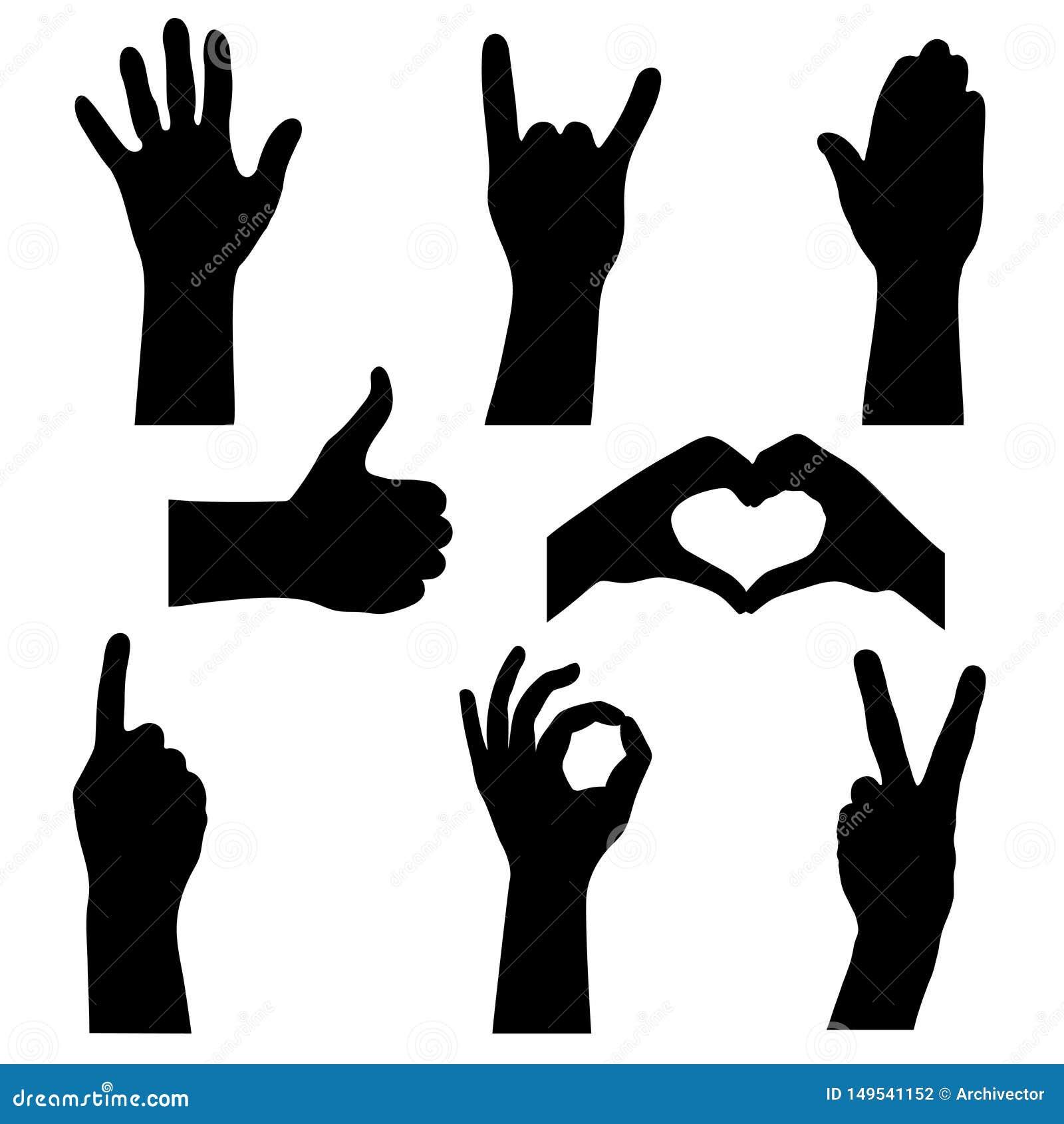 Metta profila le mani umane