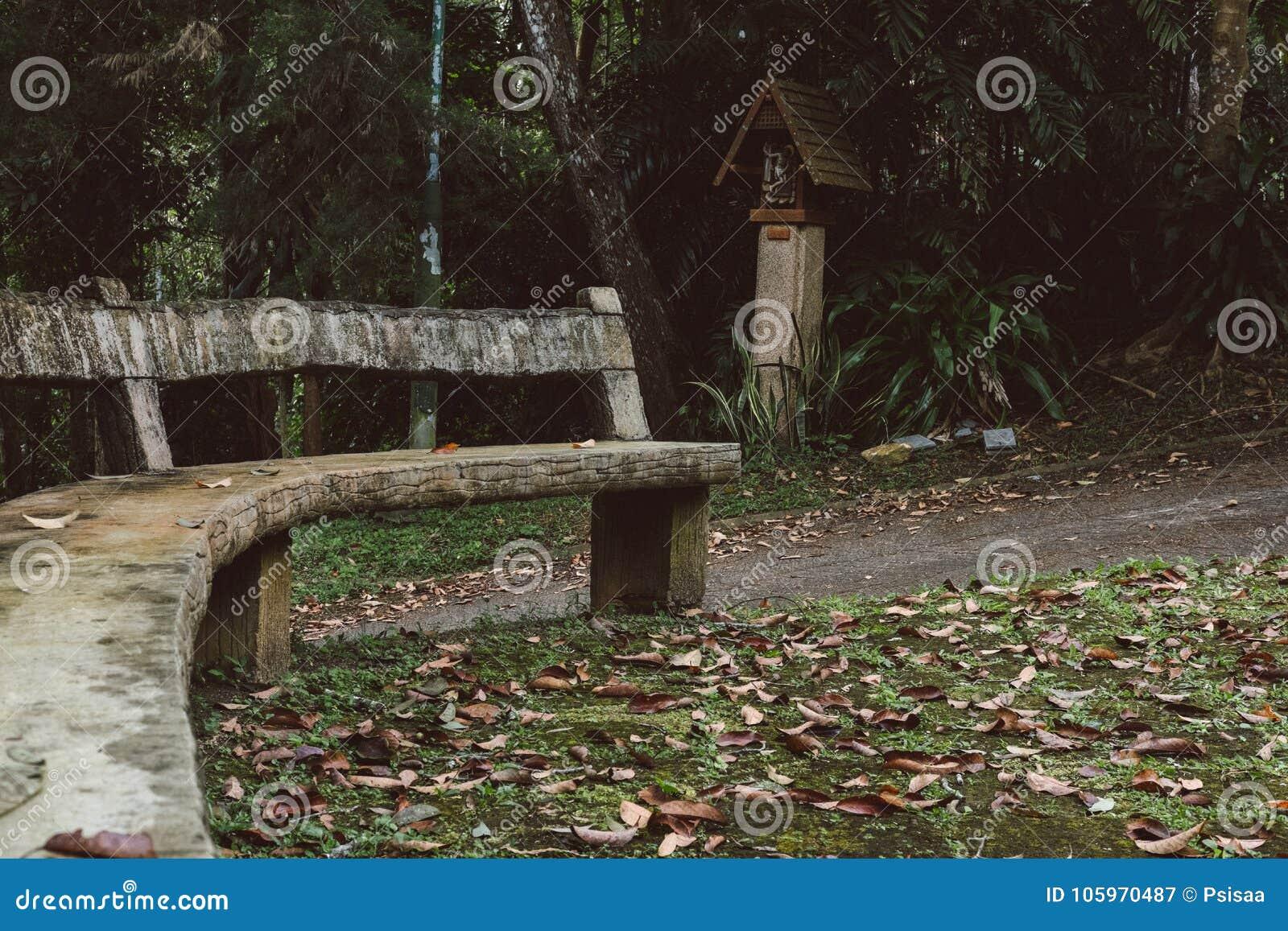 Meubles De Jardin Faits à Partir Du Rondin En Bois Chaise De Bois De ...