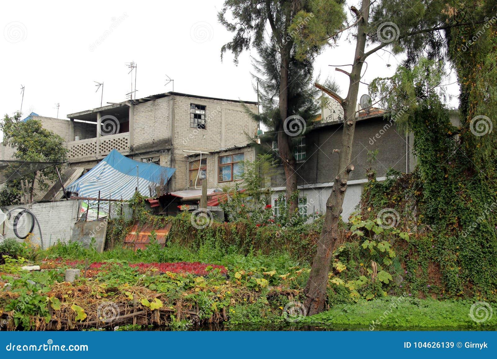 Download Mexicaans Waterdistrict Van Xochimilco Stock Afbeelding - Afbeelding bestaande uit plaats, schilderachtig: 104626139