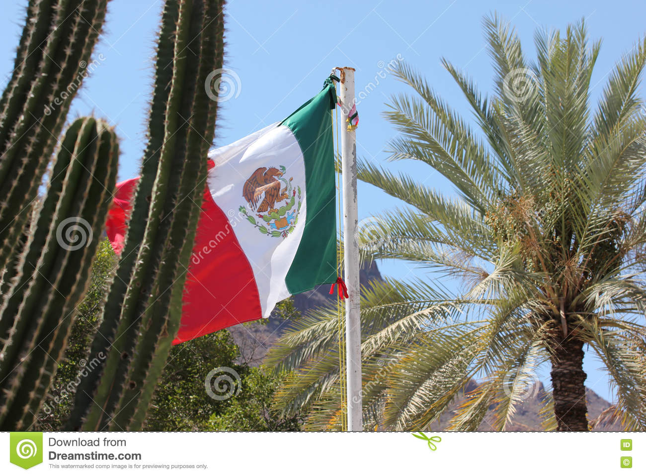 mexican flag flying royalty free stock photo image 19746635