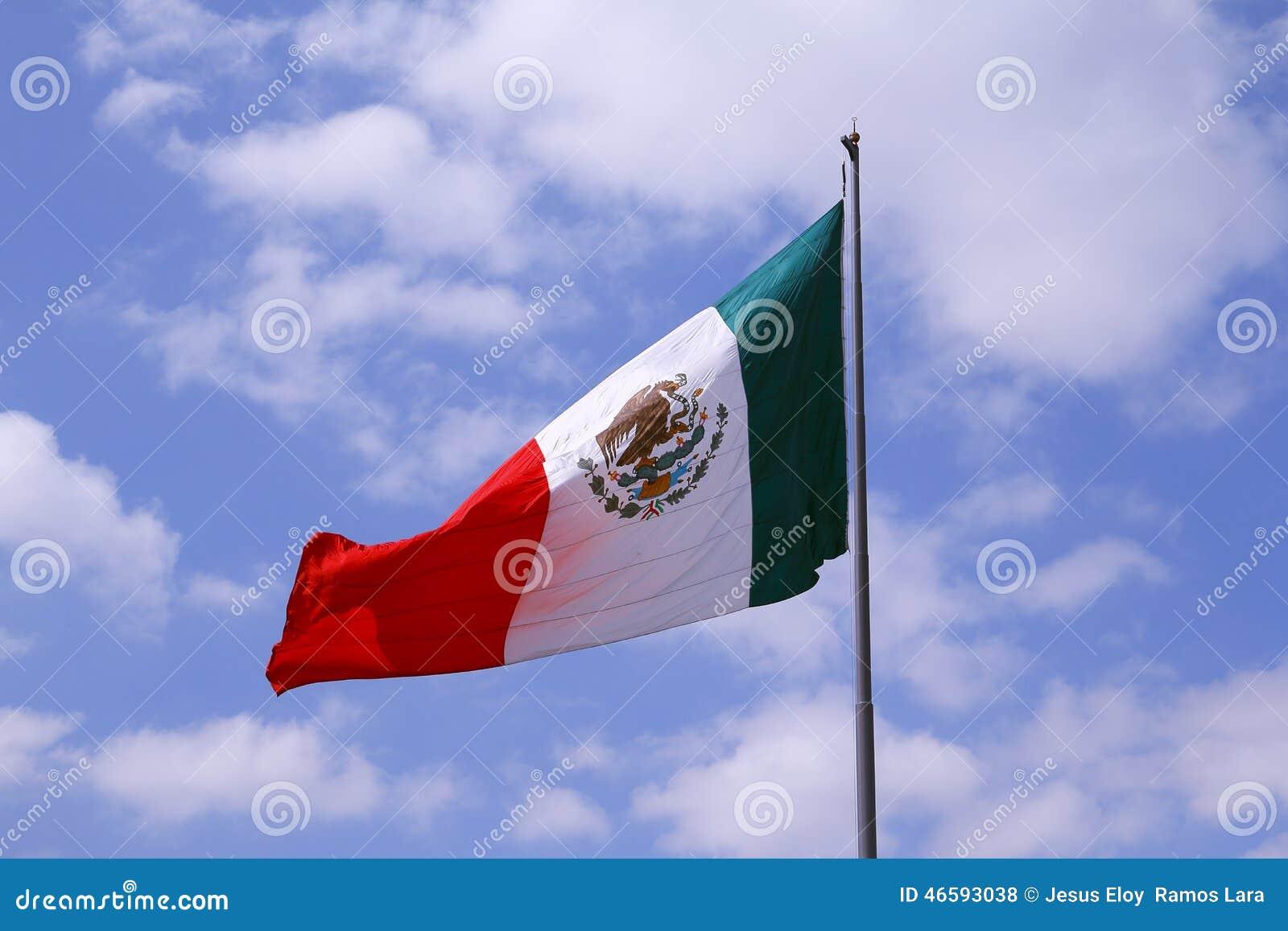 Mexican flag I