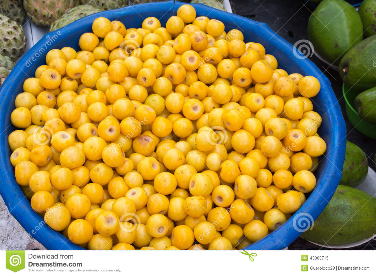 Mexican Nance Or Nanche Fruit Stock Photo Image 43063715