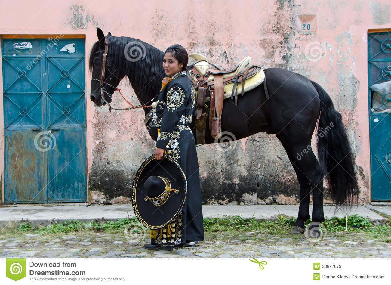 1 864 Mexican Horse Photos Free Royalty Free Stock Photos From Dreamstime
