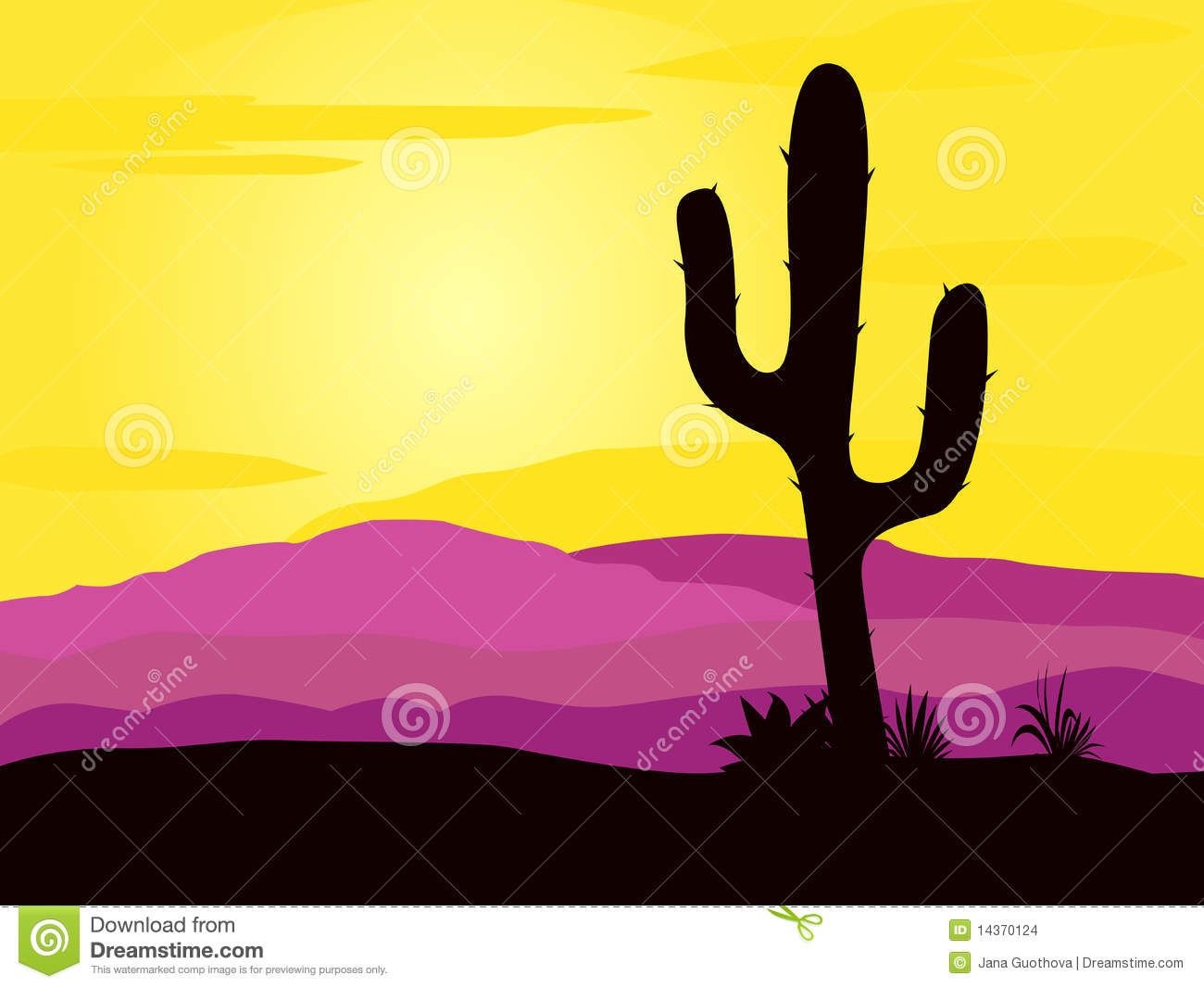 Mexico desert sunset with cactus plants silhouette