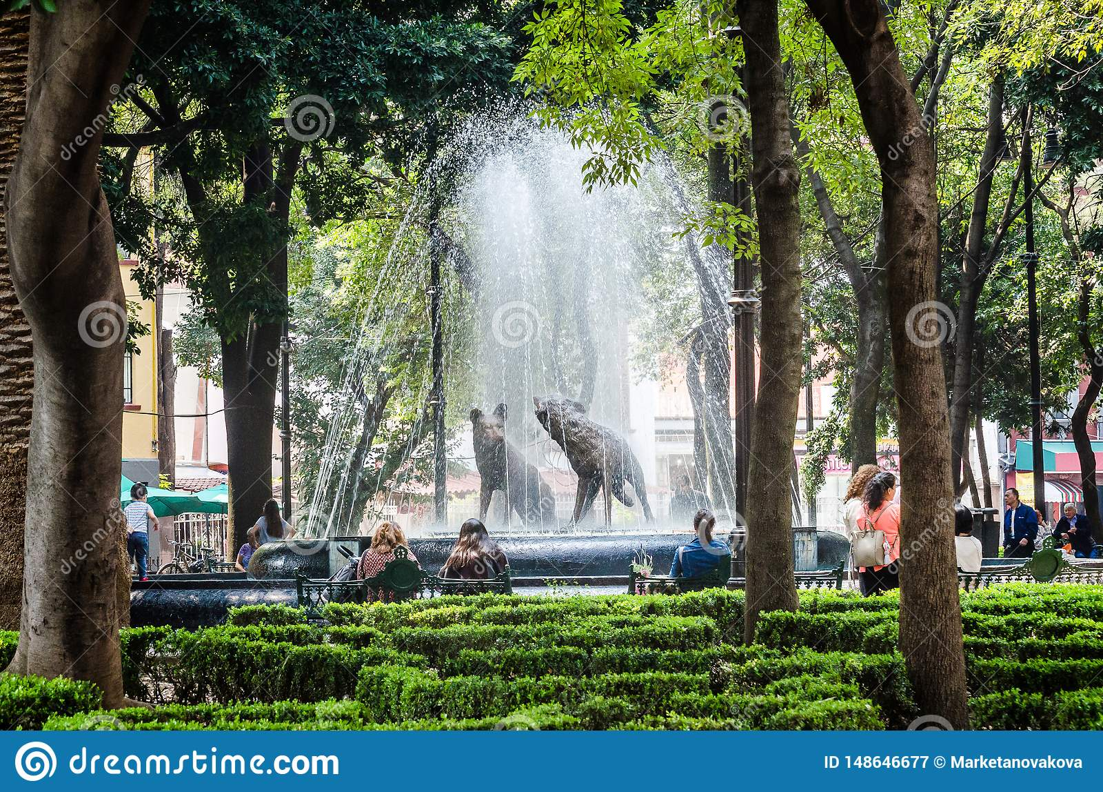 Mexico - stad, Mexico - Oktober 26, 2018 Prärievargspringbrunnen, emblem av coyoacan i Coyoacan parkerar