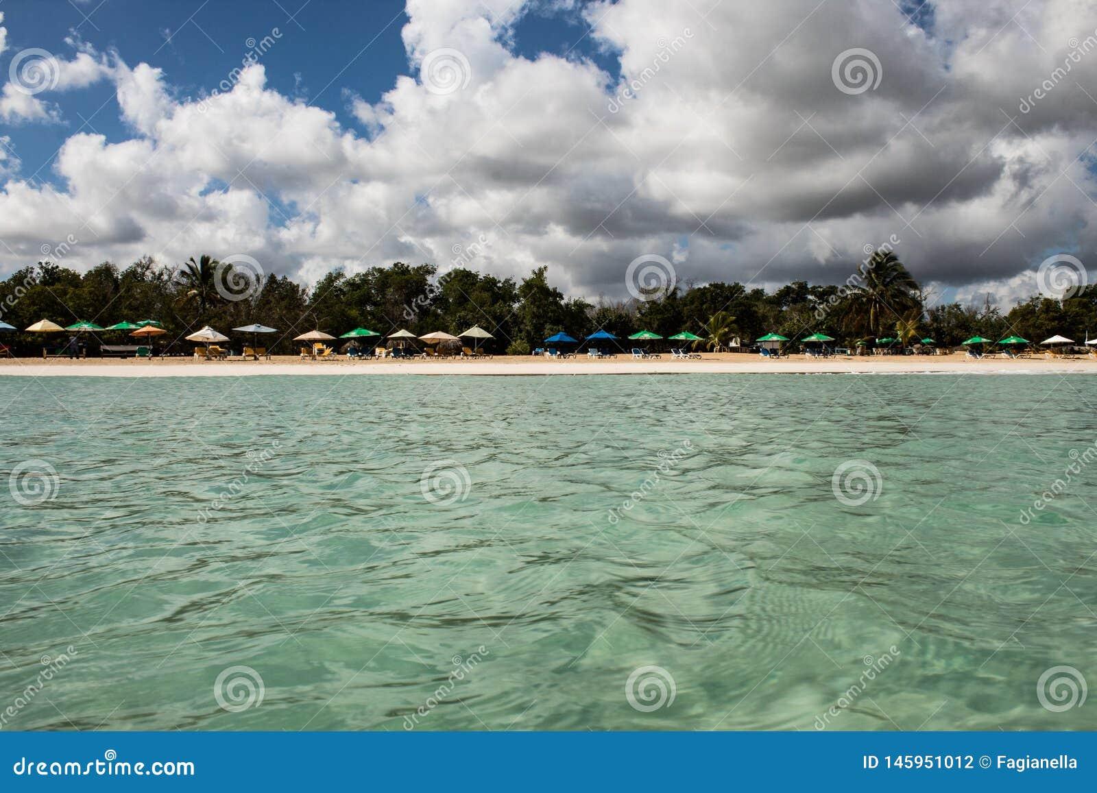 In mezzo ad un mare caraibico di stupore, verde e del turchese; acqua trasparente, paradiso tropicale Playa Macaro, Punta Cana,