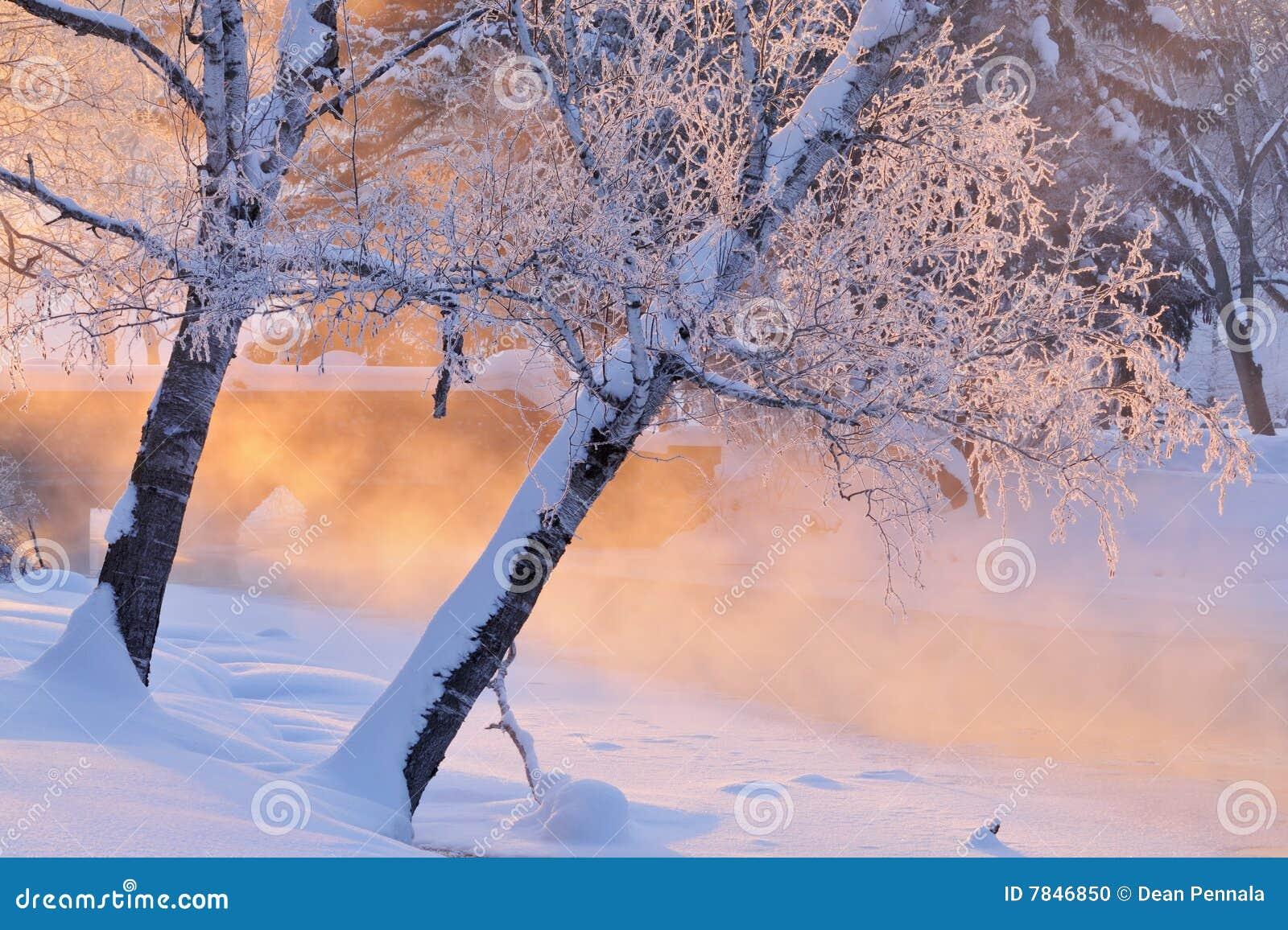 Mgłowa krajobrazowa zima