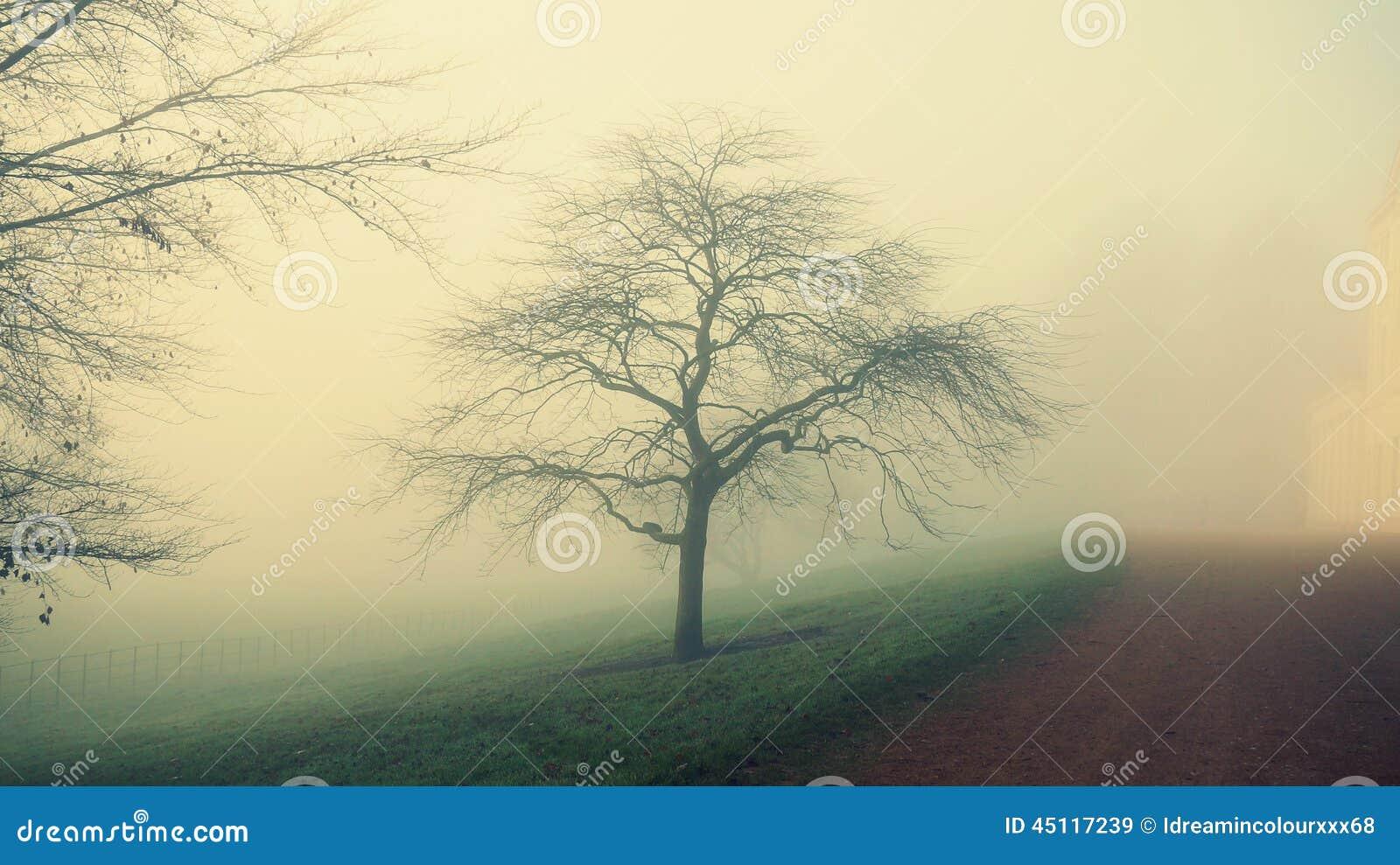 Mgłowy dzień w London