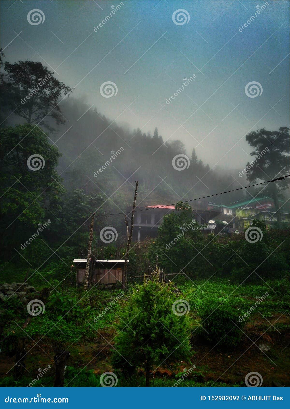 Mgłowy ranek, głęboki - zieleni łaty i mali wzgórze domy