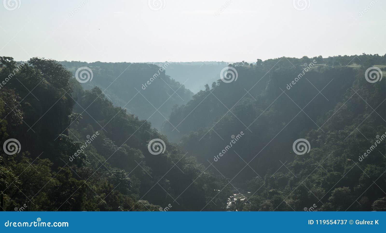 Mgłowy ranek przy Zieloną Tincha spadku doliną blisko India