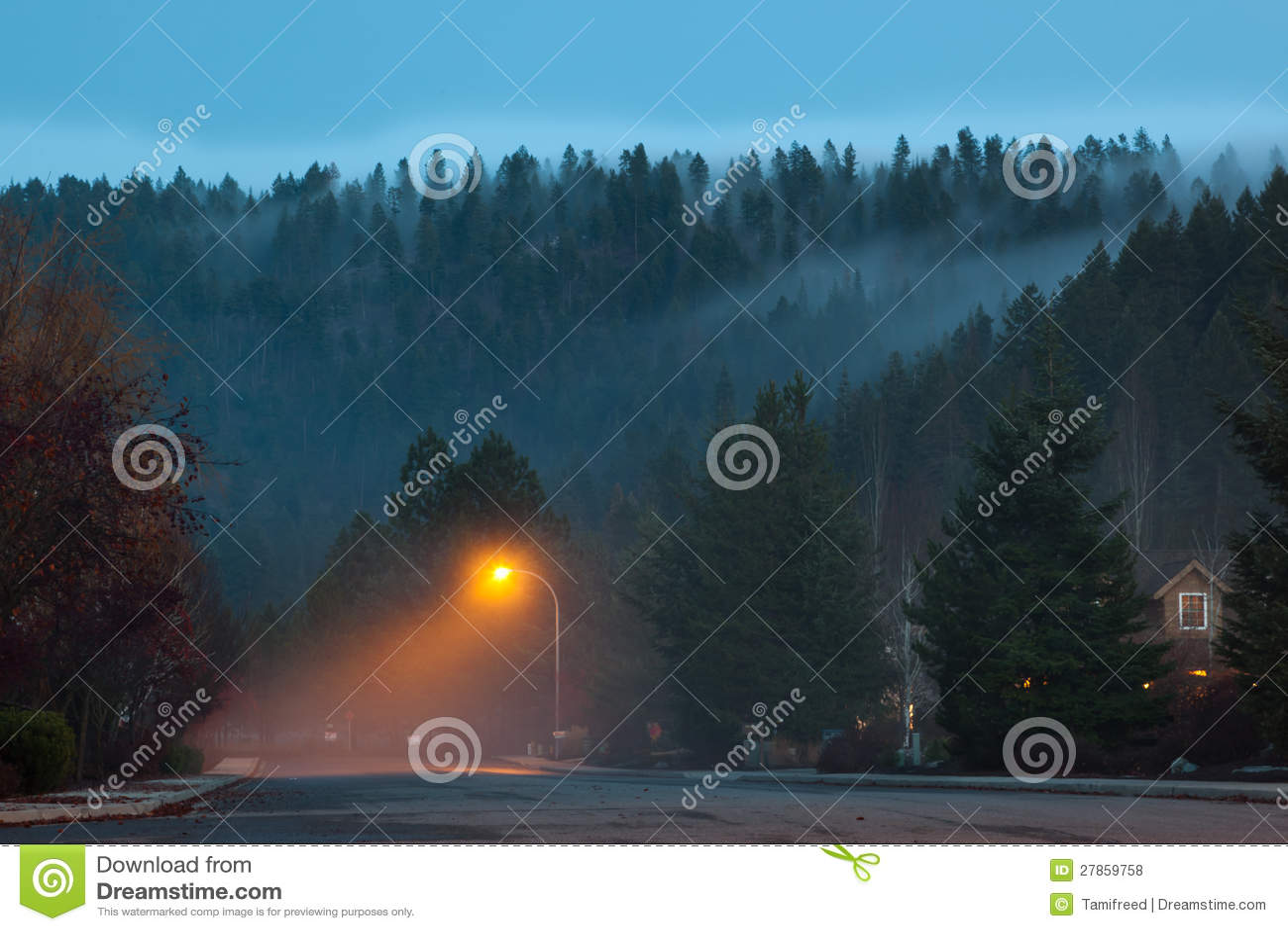 Mgłowy Sąsiedztwo