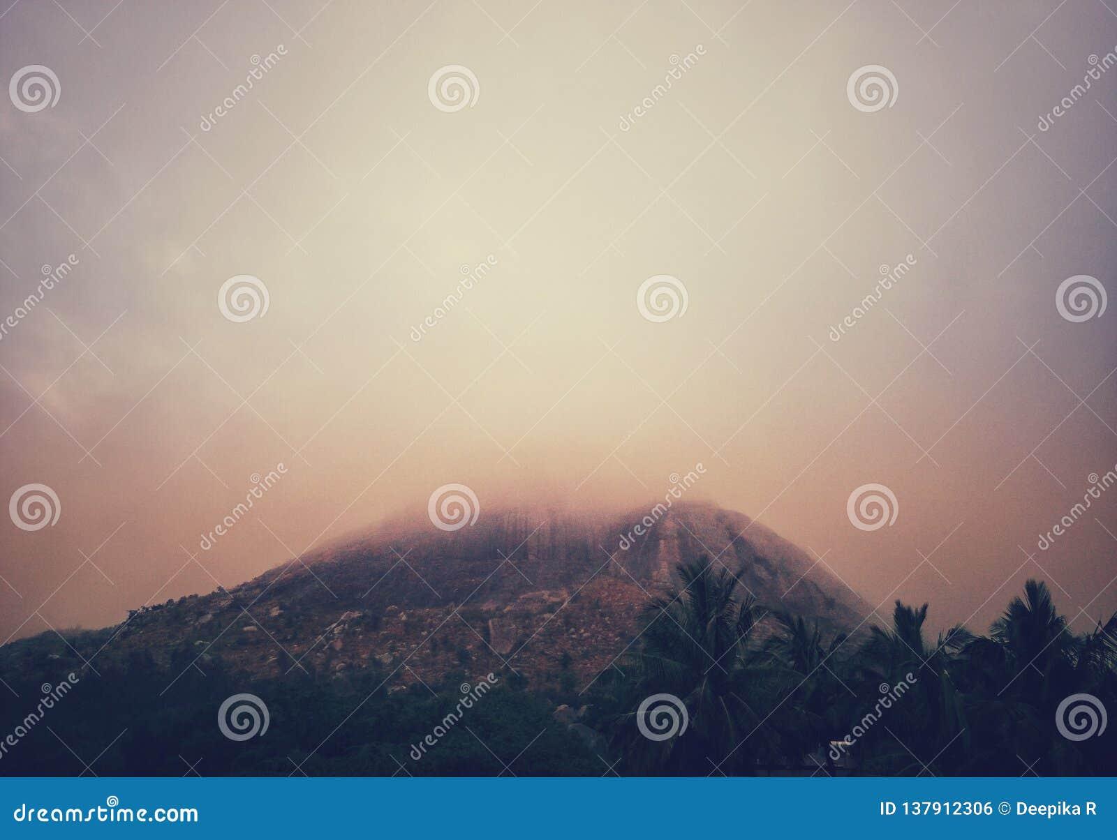 Mgłowy wzgórze w zima ranku
